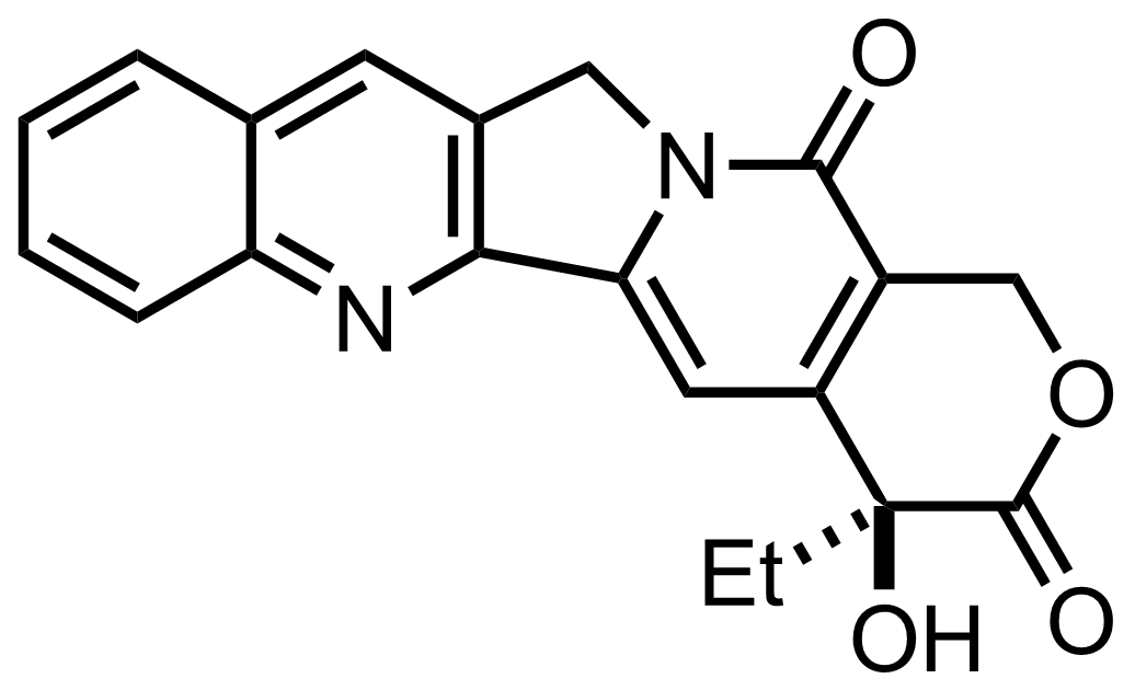 Structure of Camptothecin