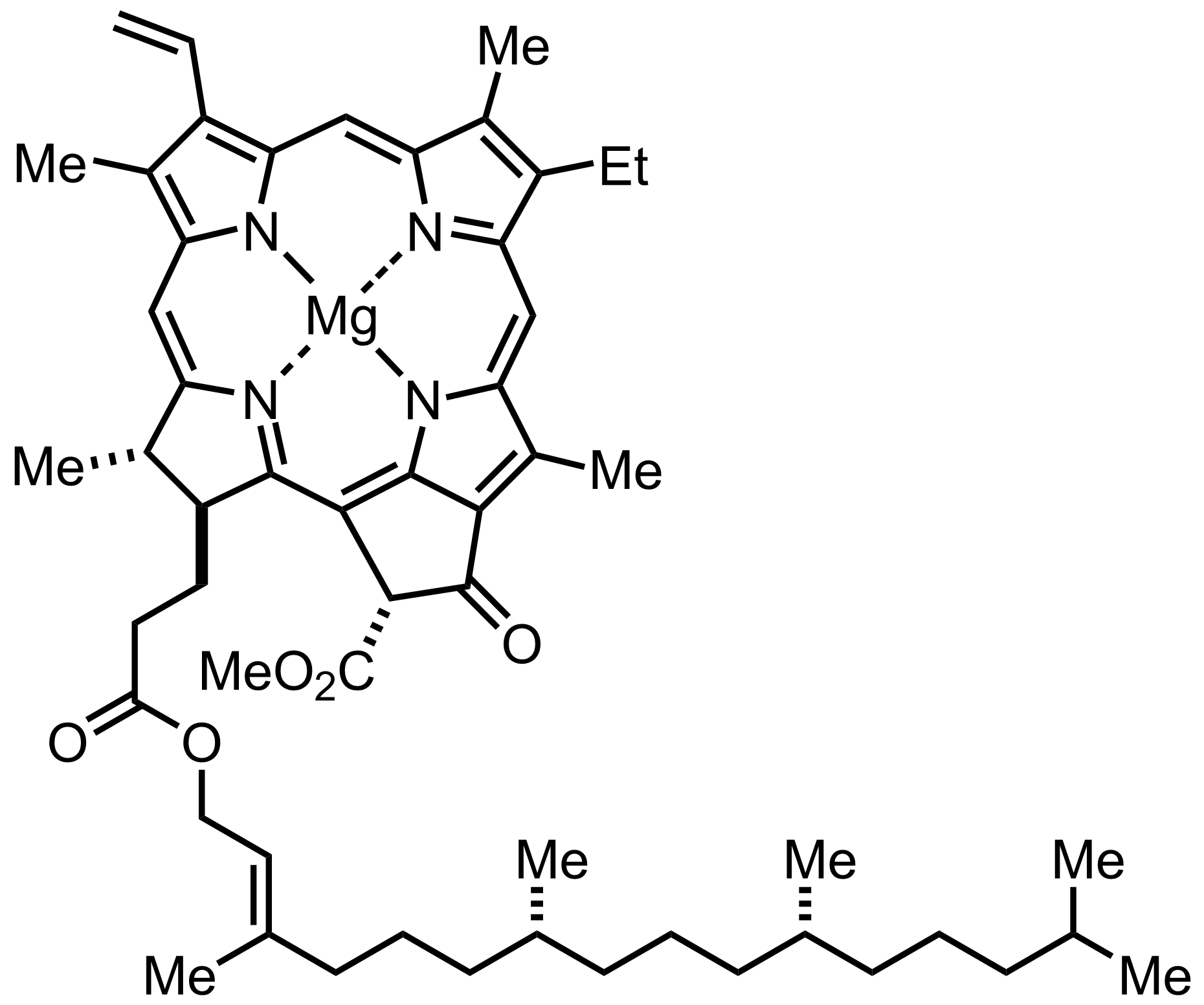 Structure of Chlorophyll A