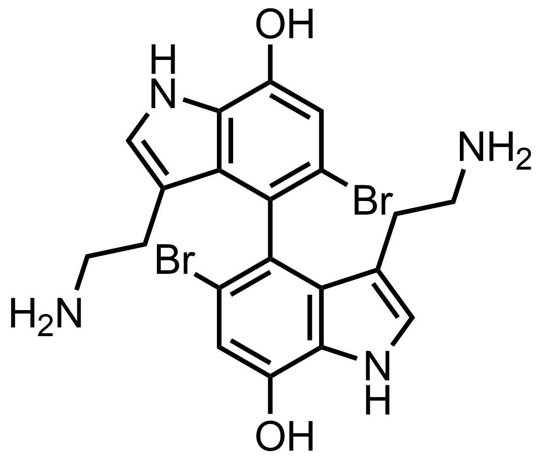 Structure of Dendridine A
