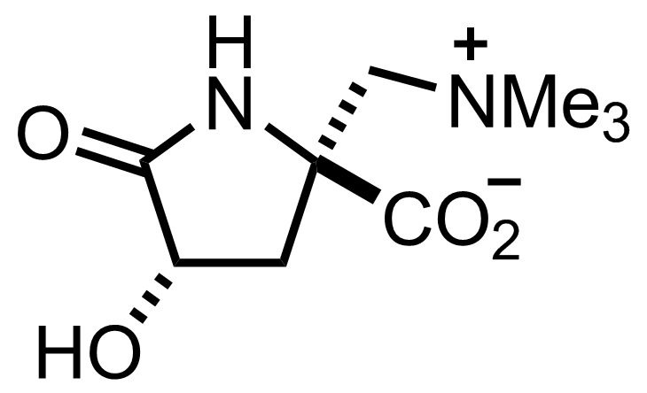 Dysibetaine structure