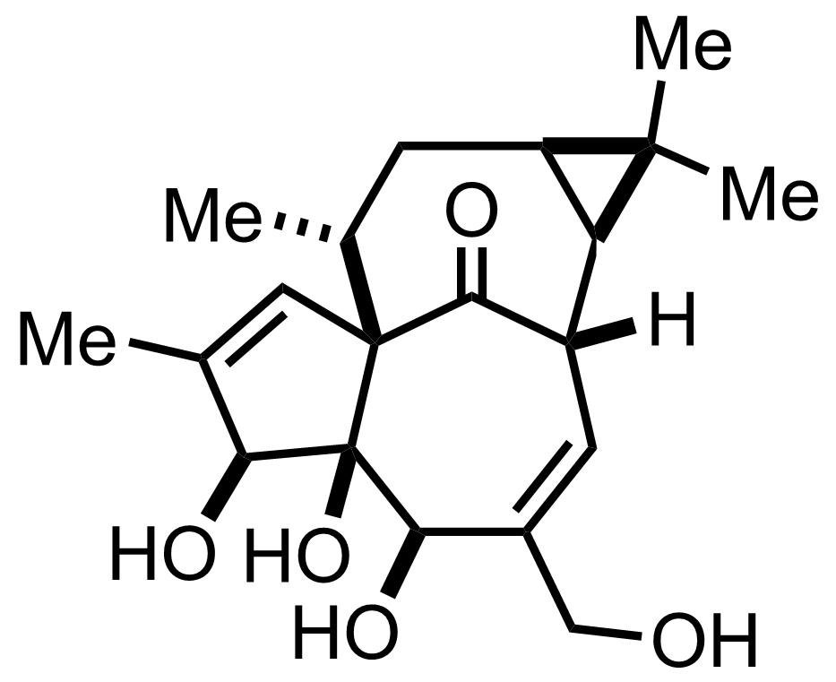 Ingenol structure