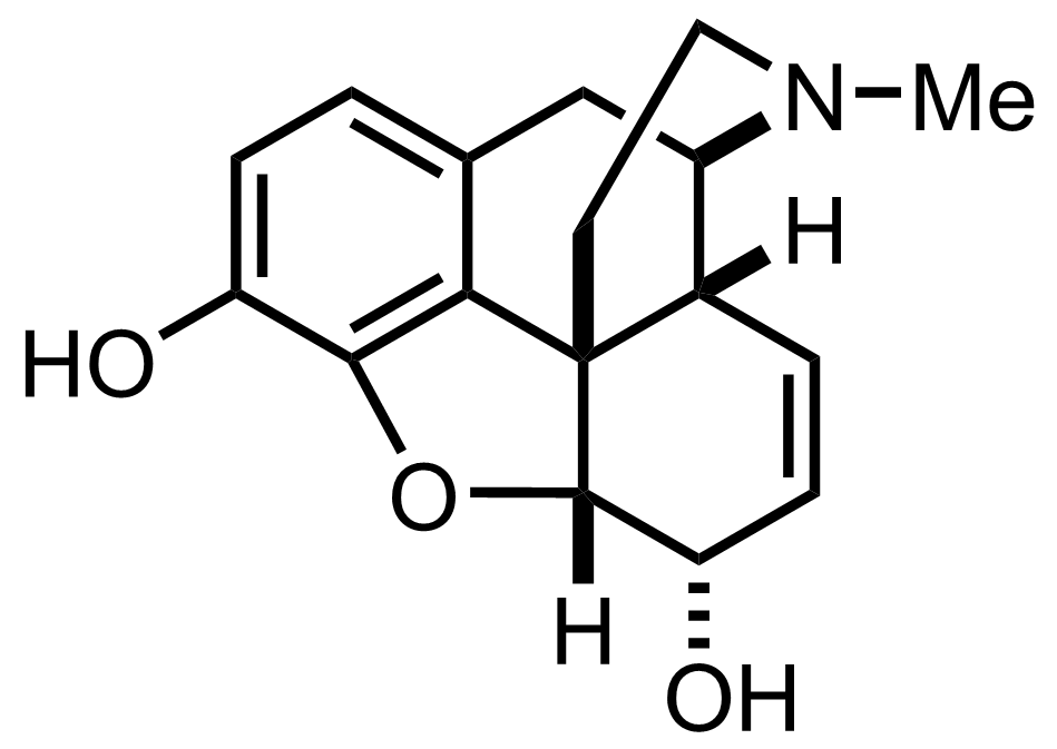 Structure of Morphine