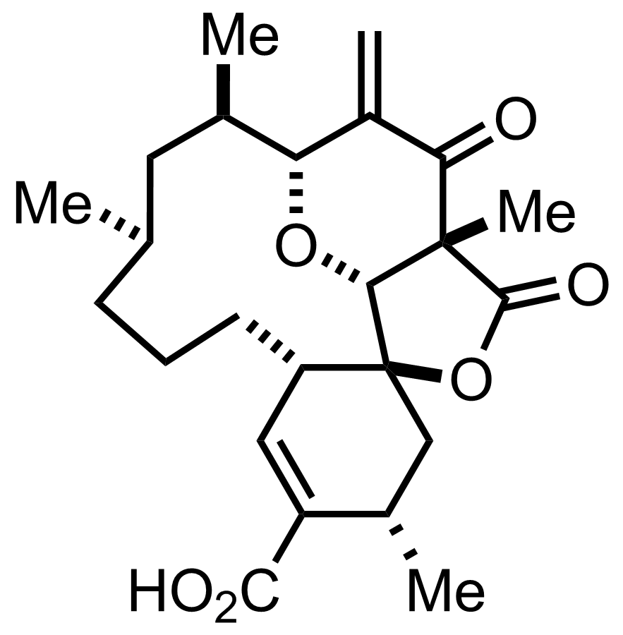 Structure of Okilactomycin