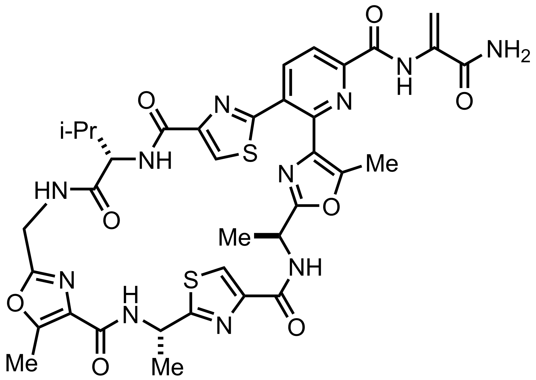 Structure of Promothiocin A