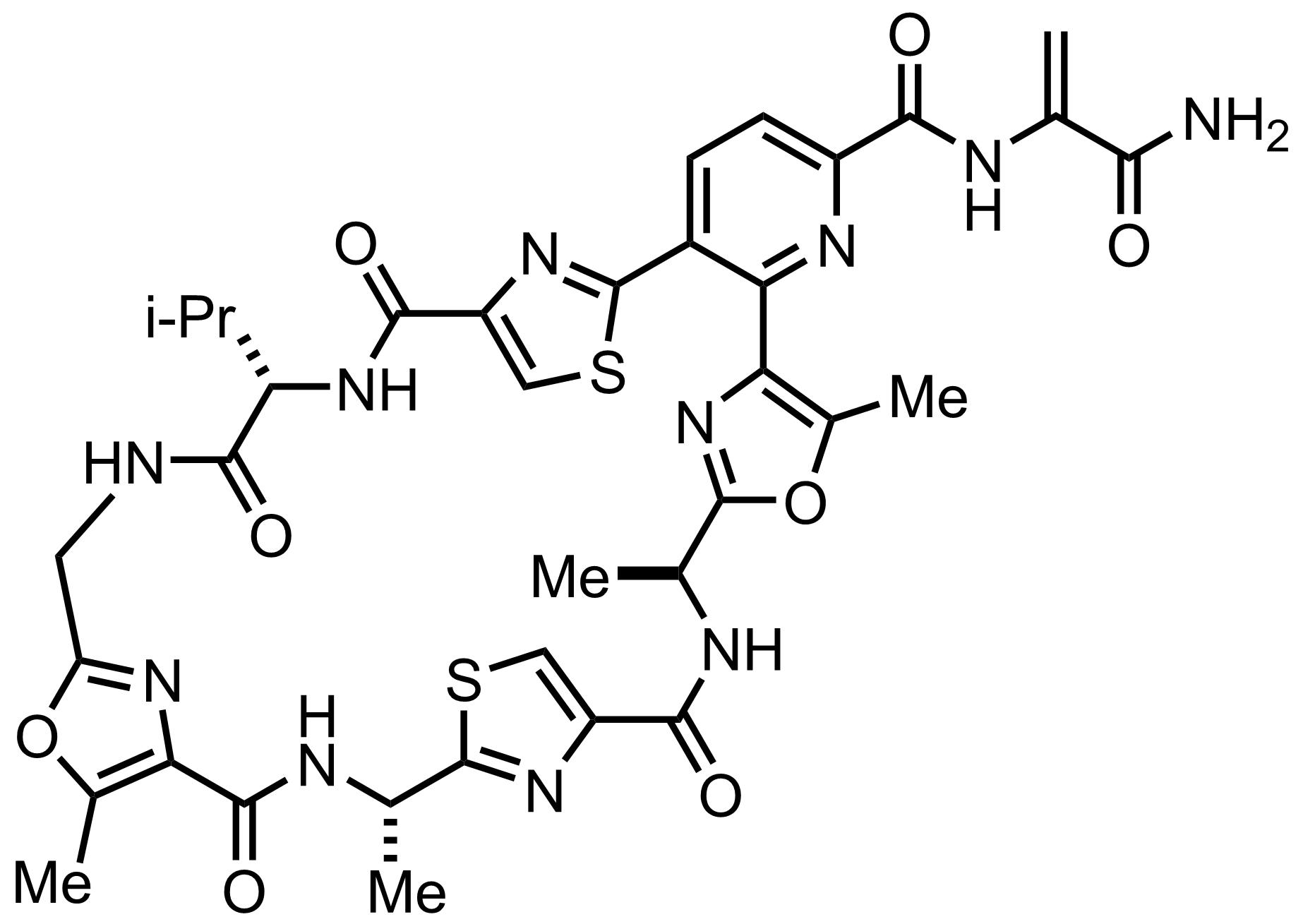 Structure of Promothiocin A