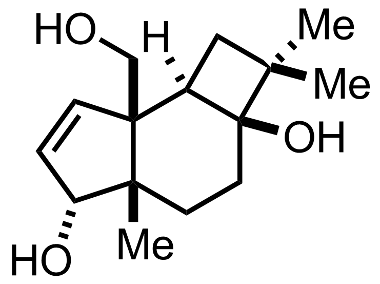 Punctatin A structure