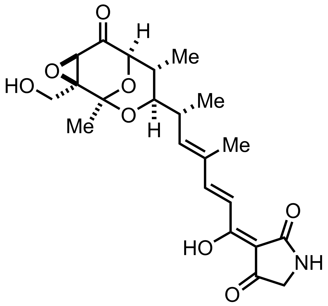 Structure of Tirandamycin B