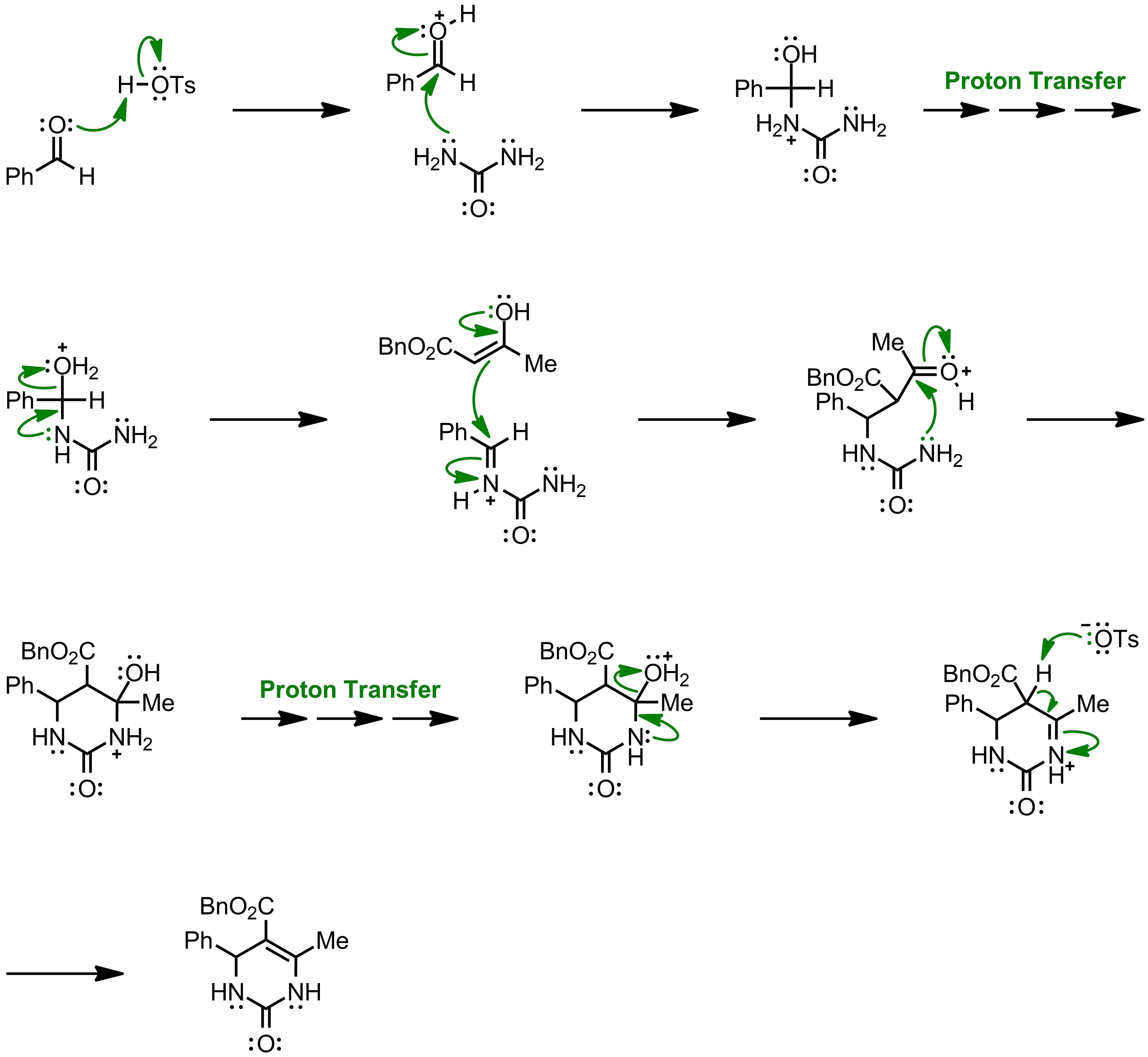 Mechanism of the Biginelli Reaction