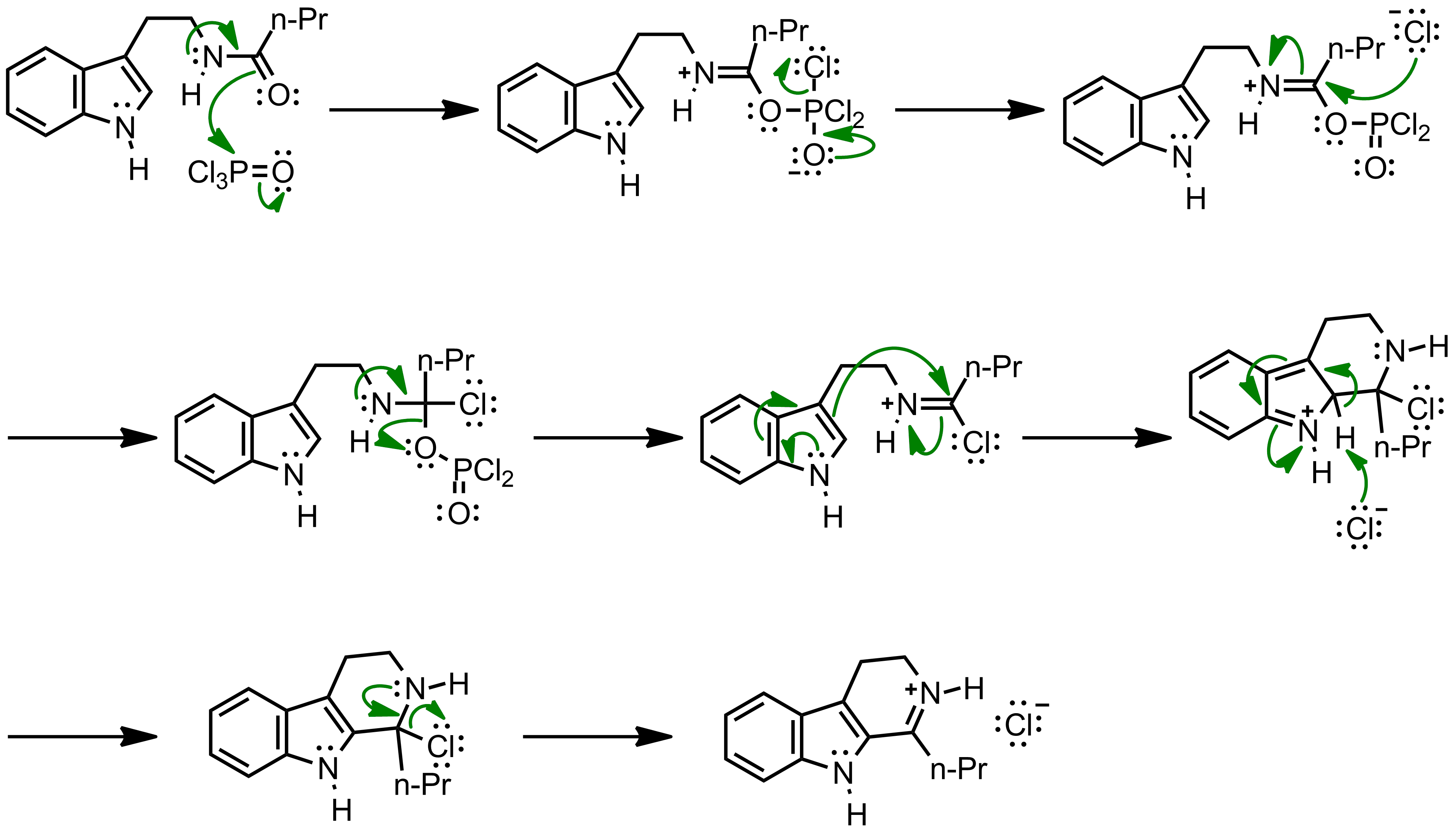 Mechanism of the Bischler-Napieralski Reaction
