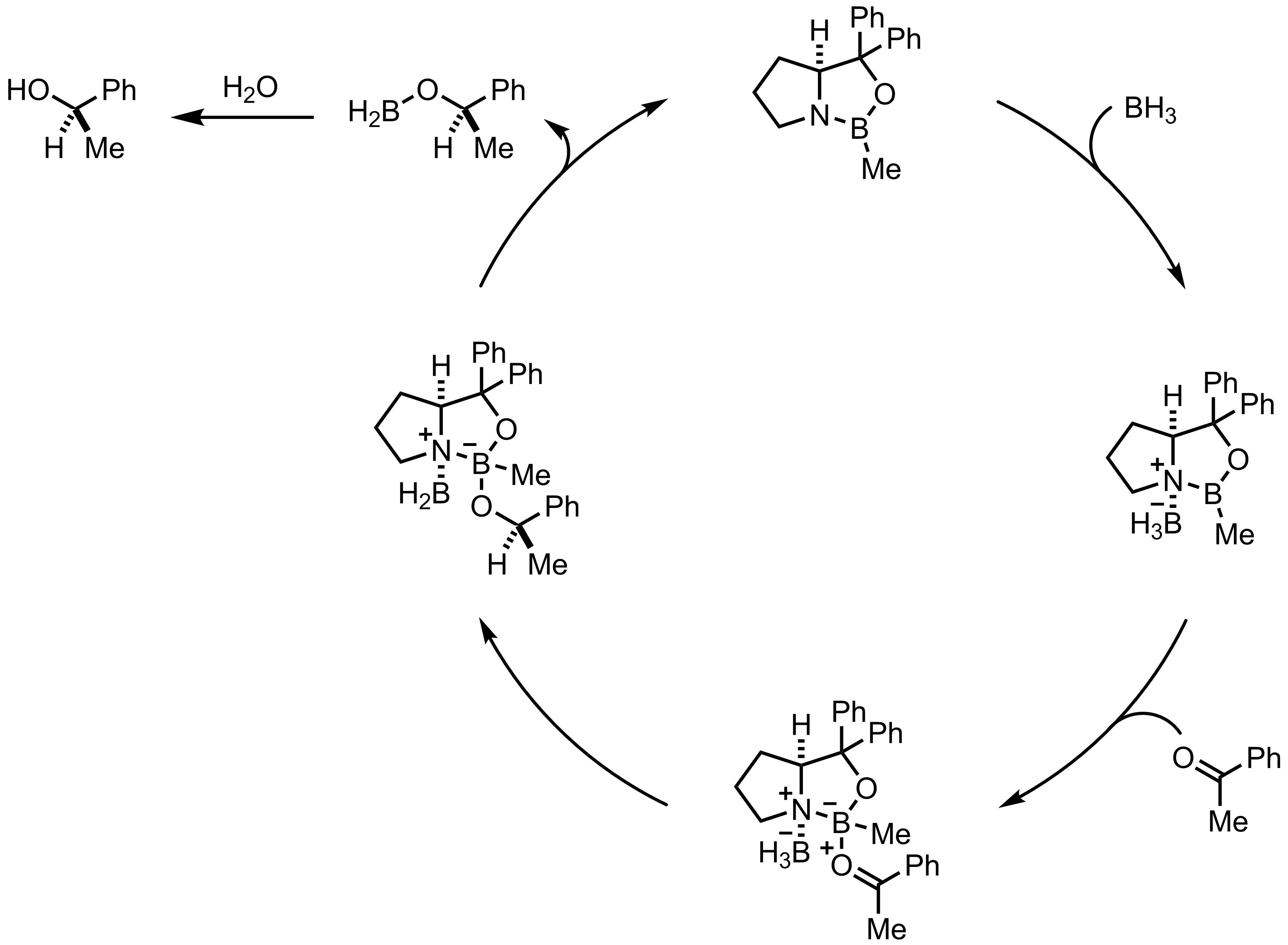 Mechanism of the Corey-Itsuno Reaction