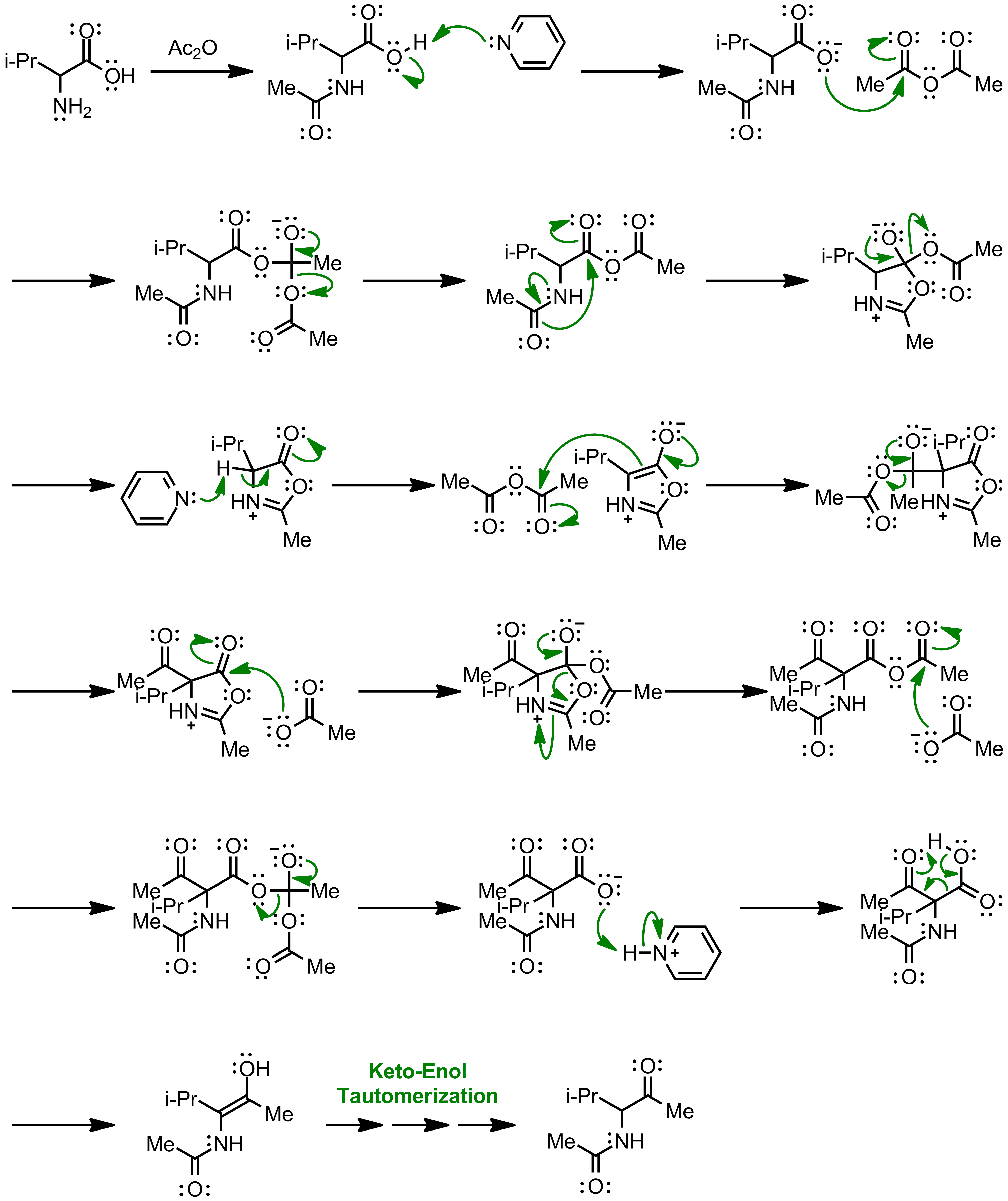 Mechanism of the Dakin-West Reaction