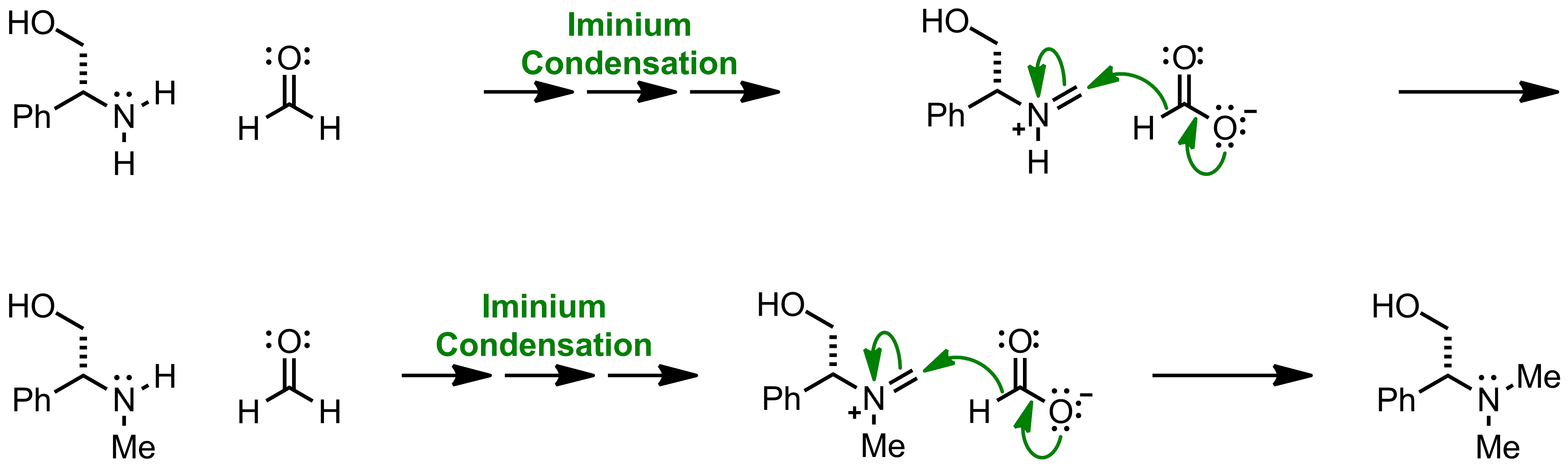 Mechanism of the Eschweiler-Clarke Reaction