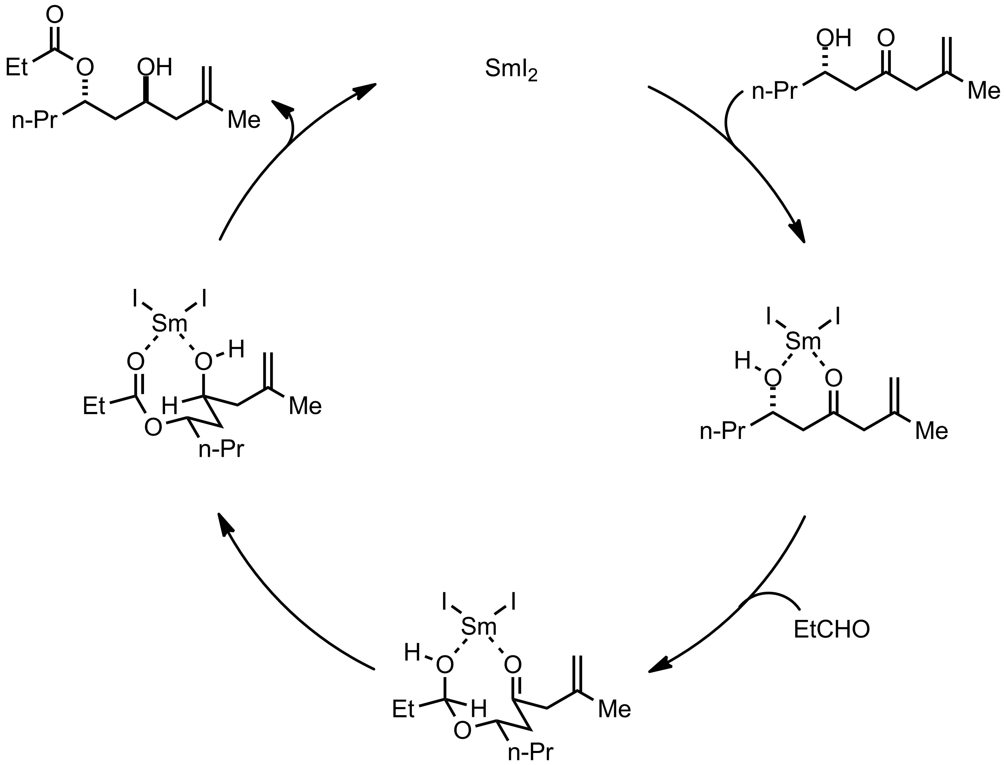 Mechanism of the Evans-Tishchenko Reaction