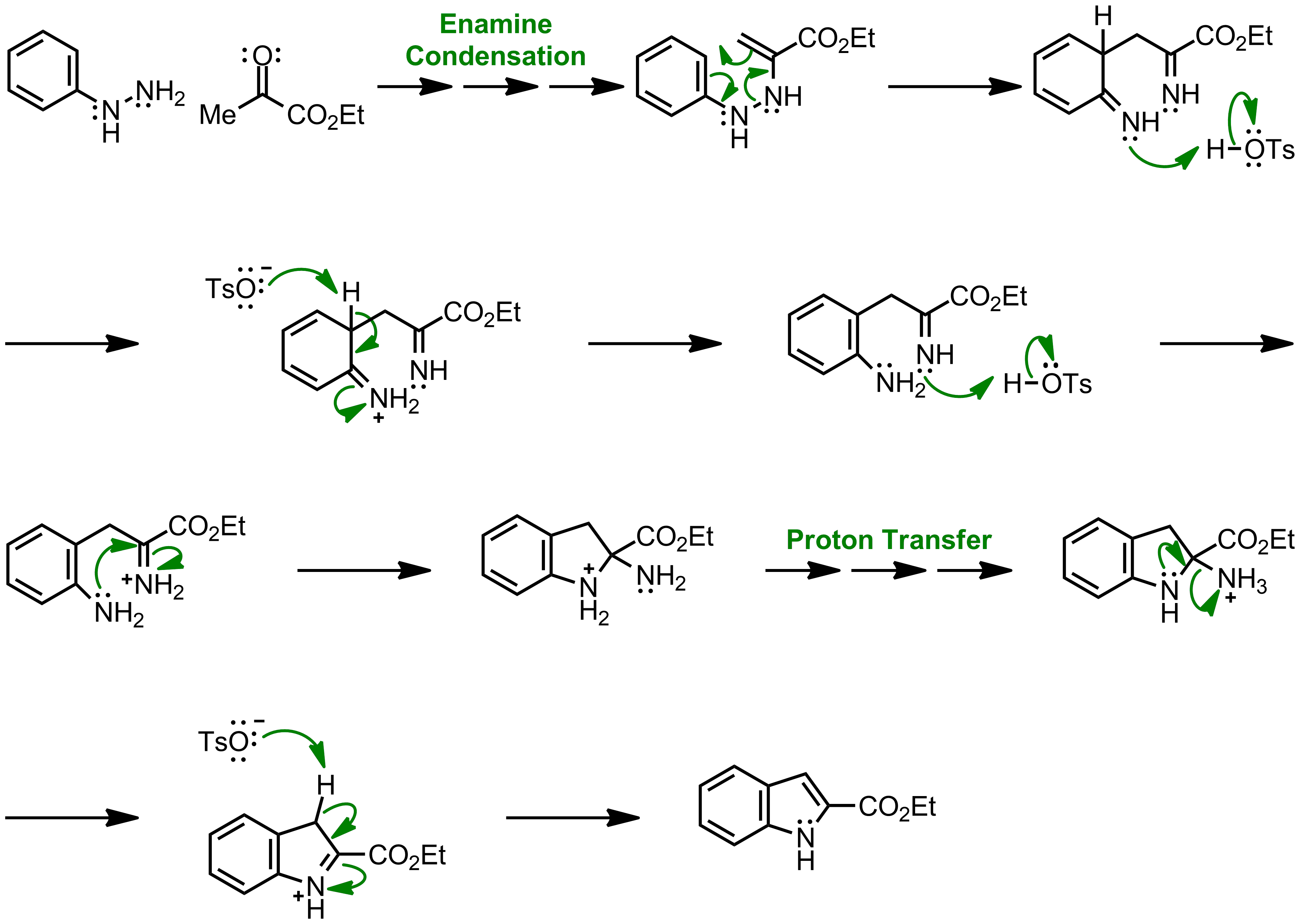 Mechanism of the Fischer Indole Synthesis