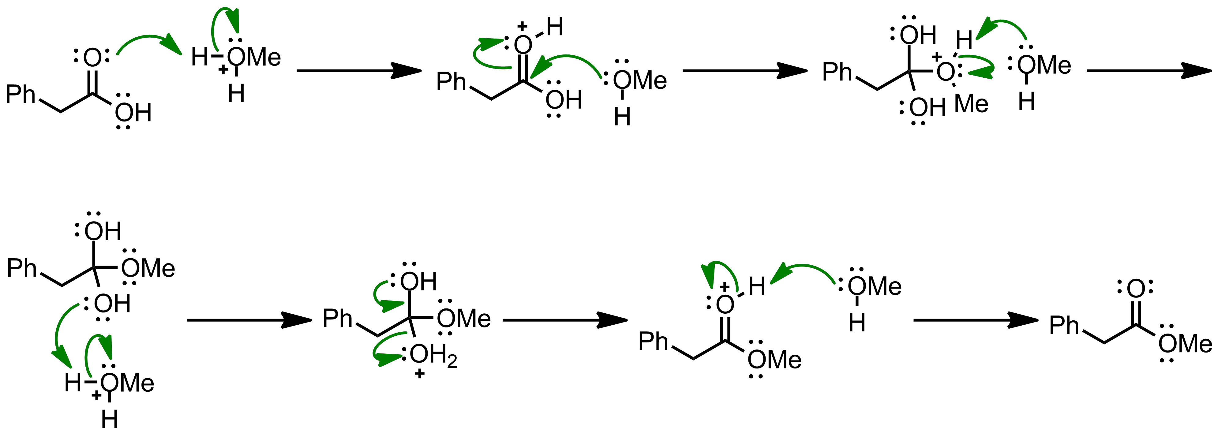 Mechanism of the Fischer-Speier Esterification