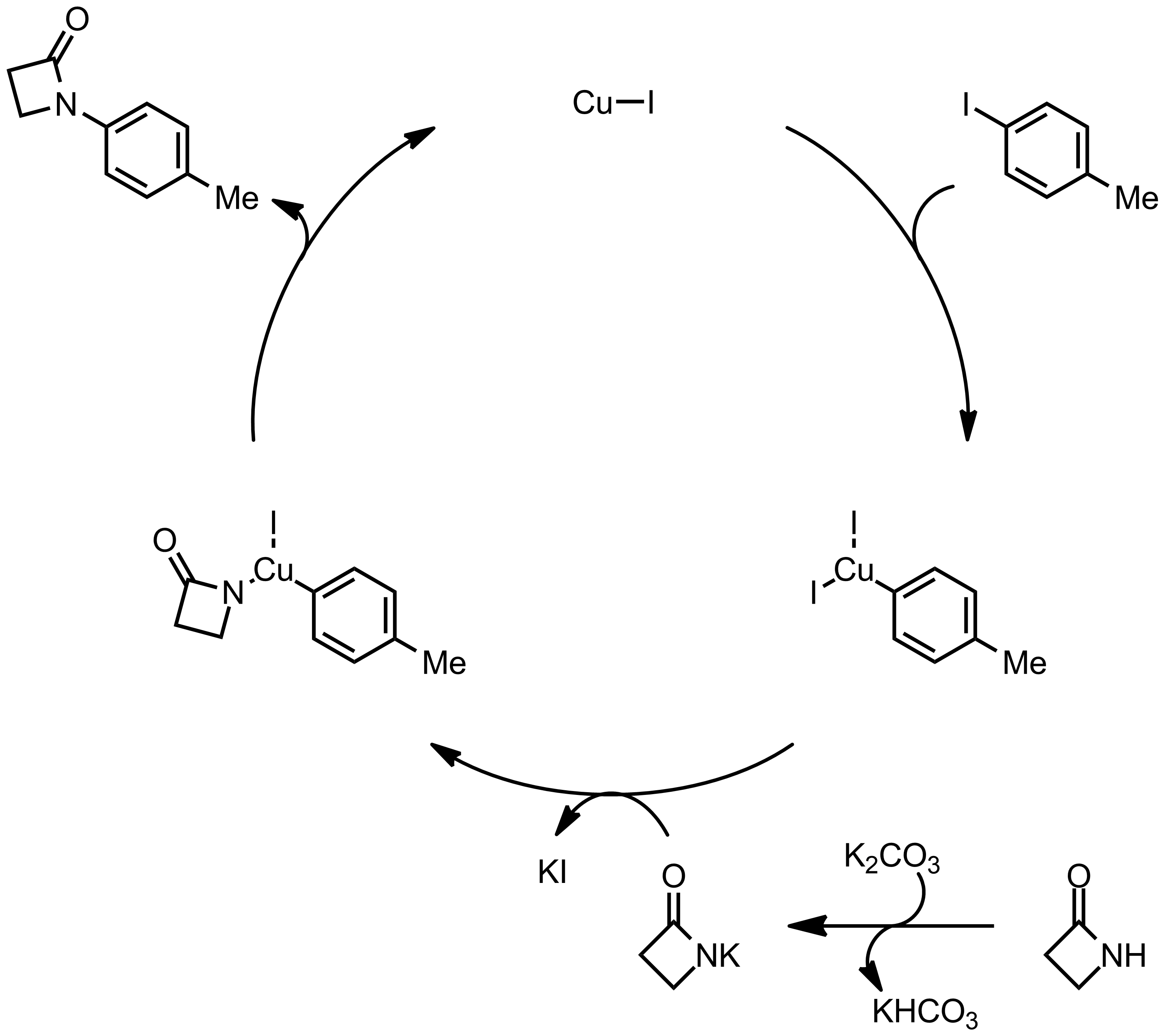 Mechanism of the Goldberg Reaction