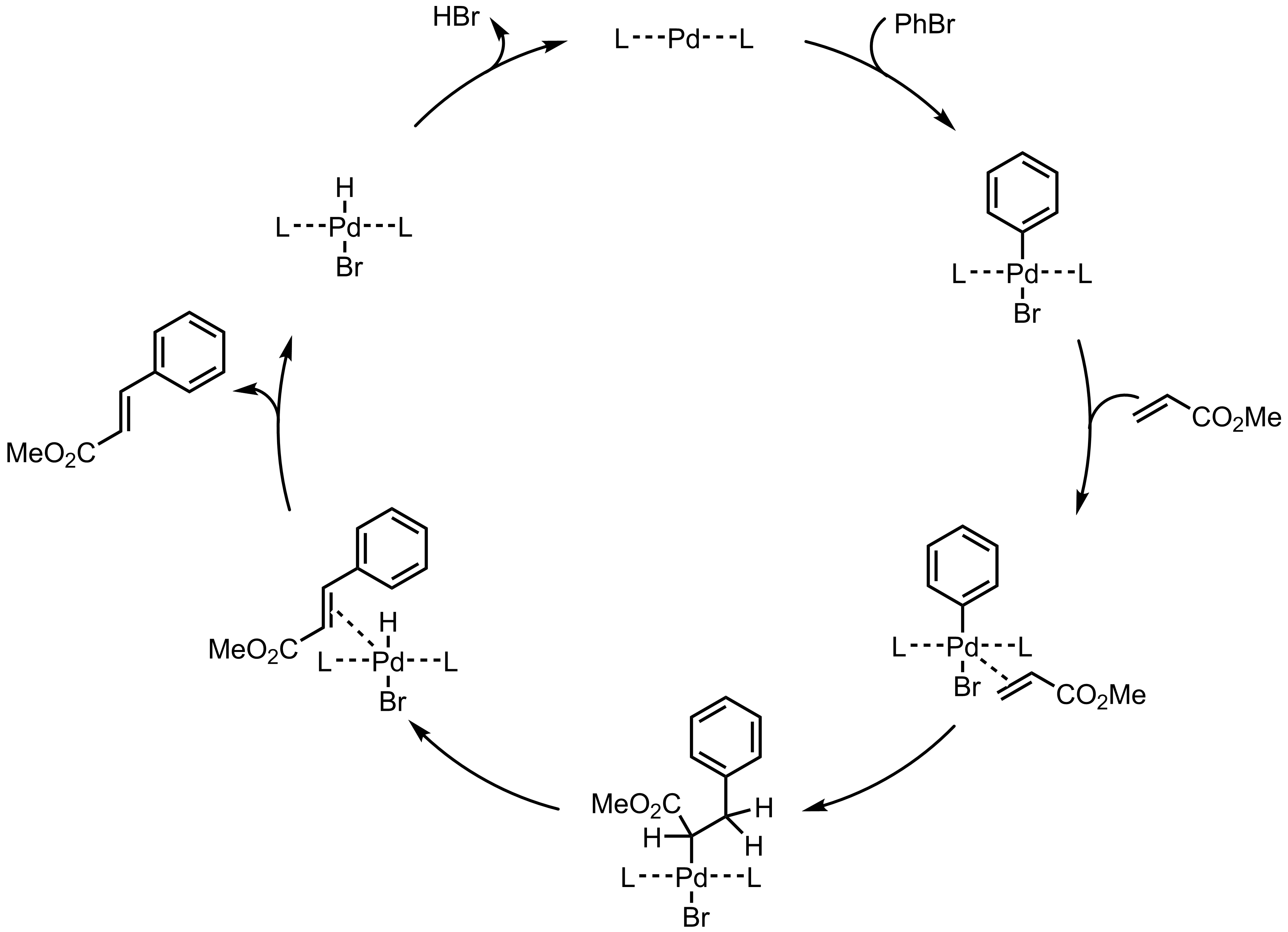 Mechanism of the Heck Coupling