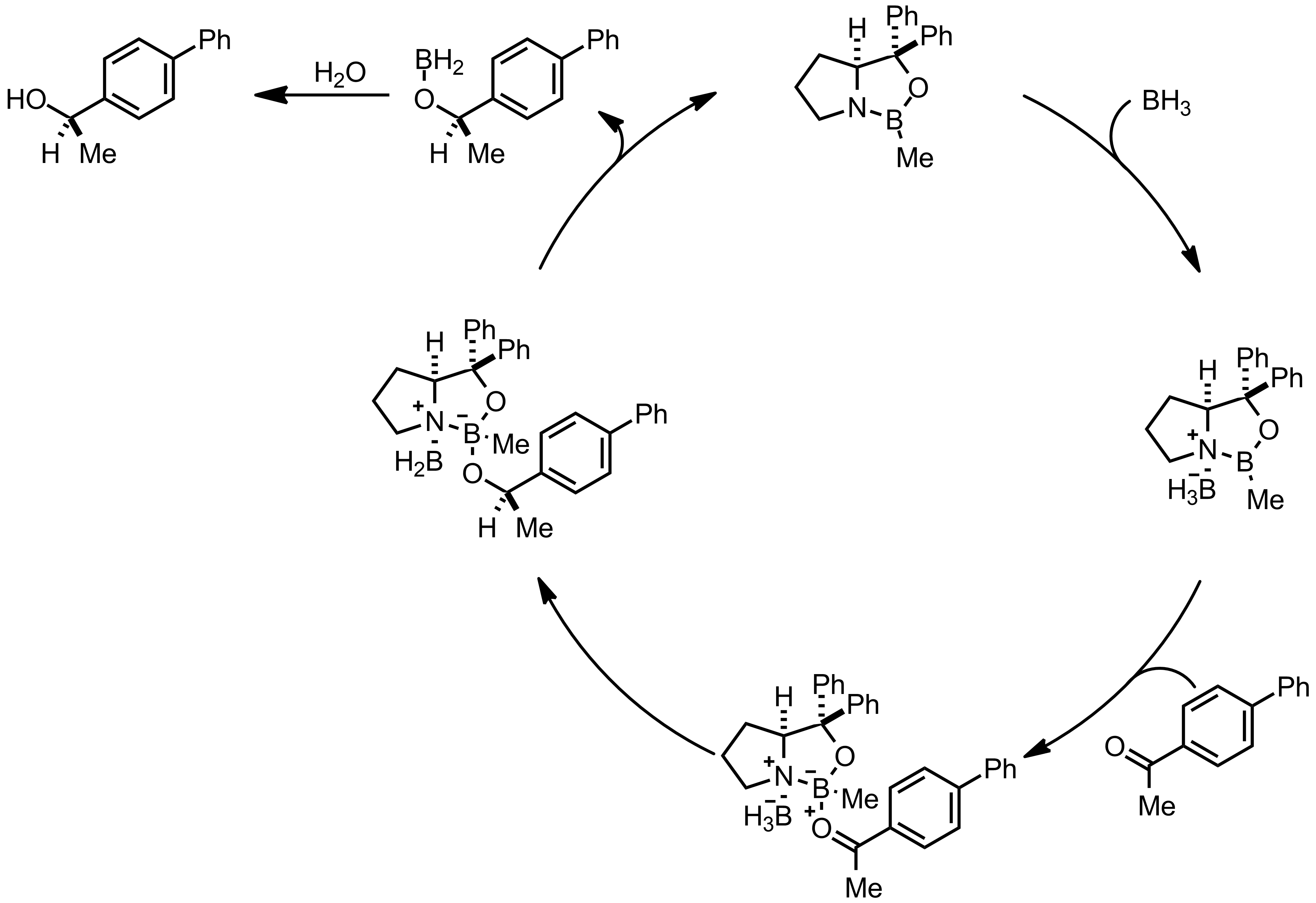 Mechanism of the Itsuno-Corey Reduction