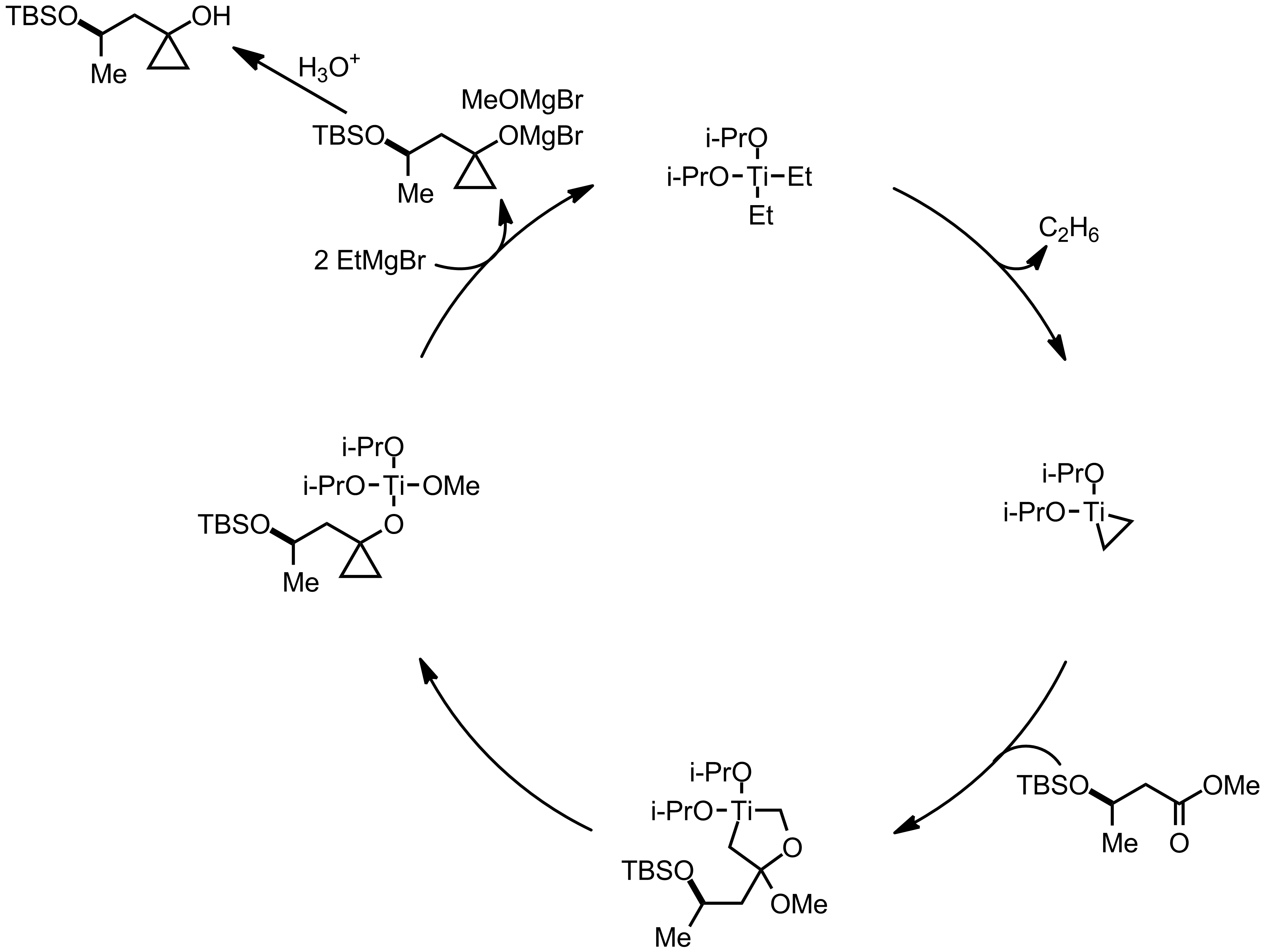 Mechanism of the Kulinkovich Reaction