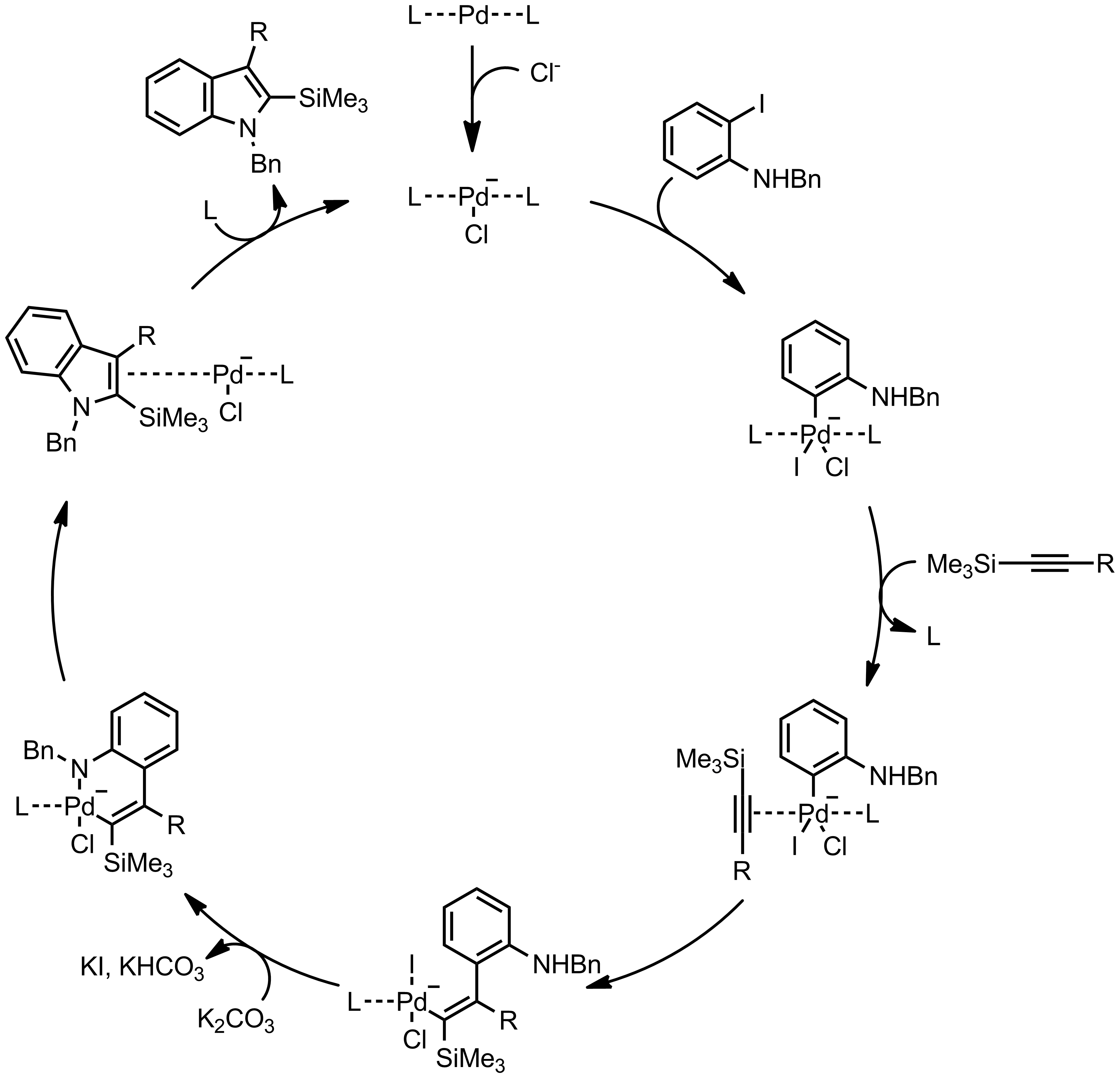 Mechanism of the Larock Indole Synthesis