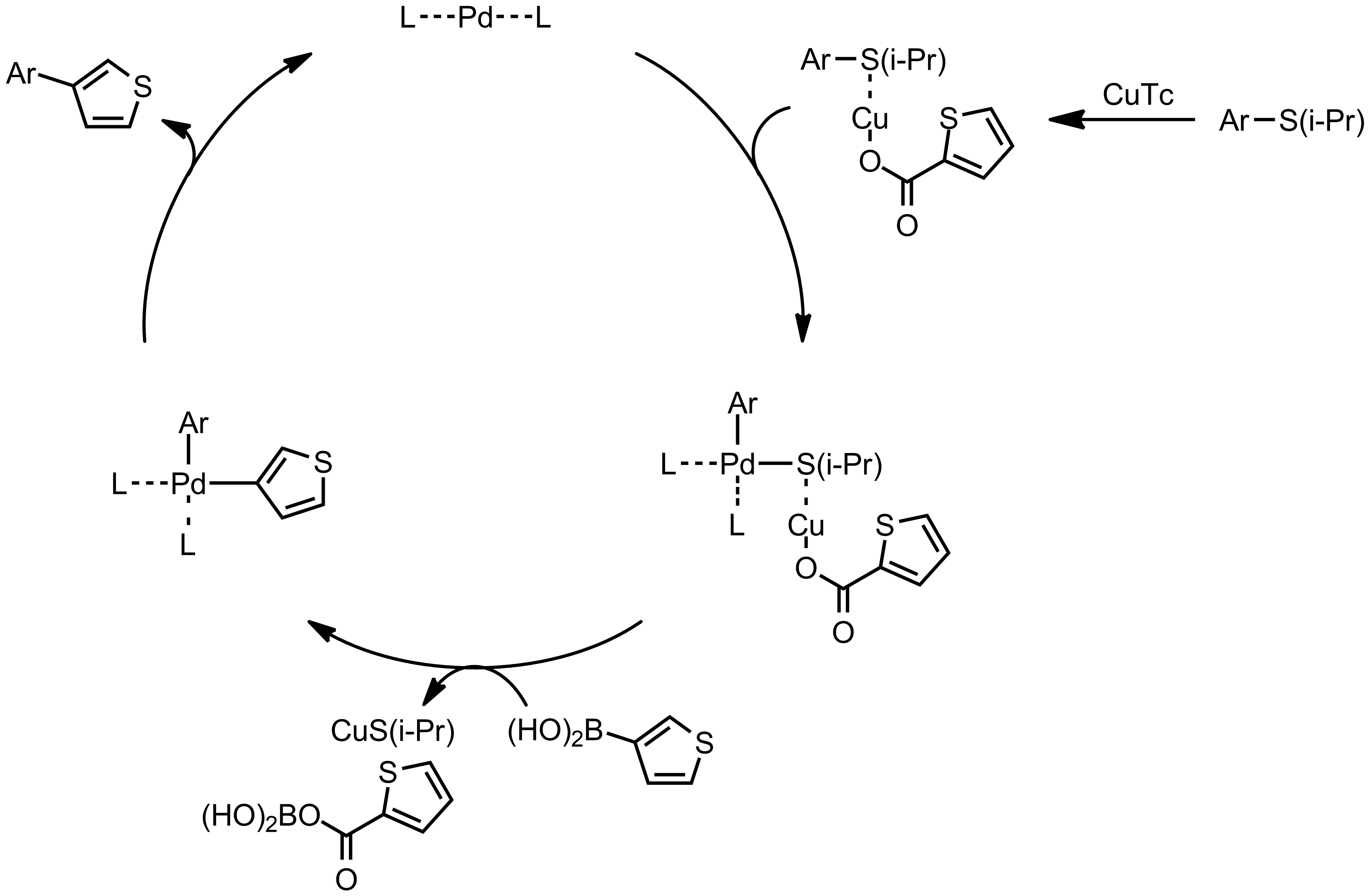 Mechanism of the Liebeskind-Srogl Coupling