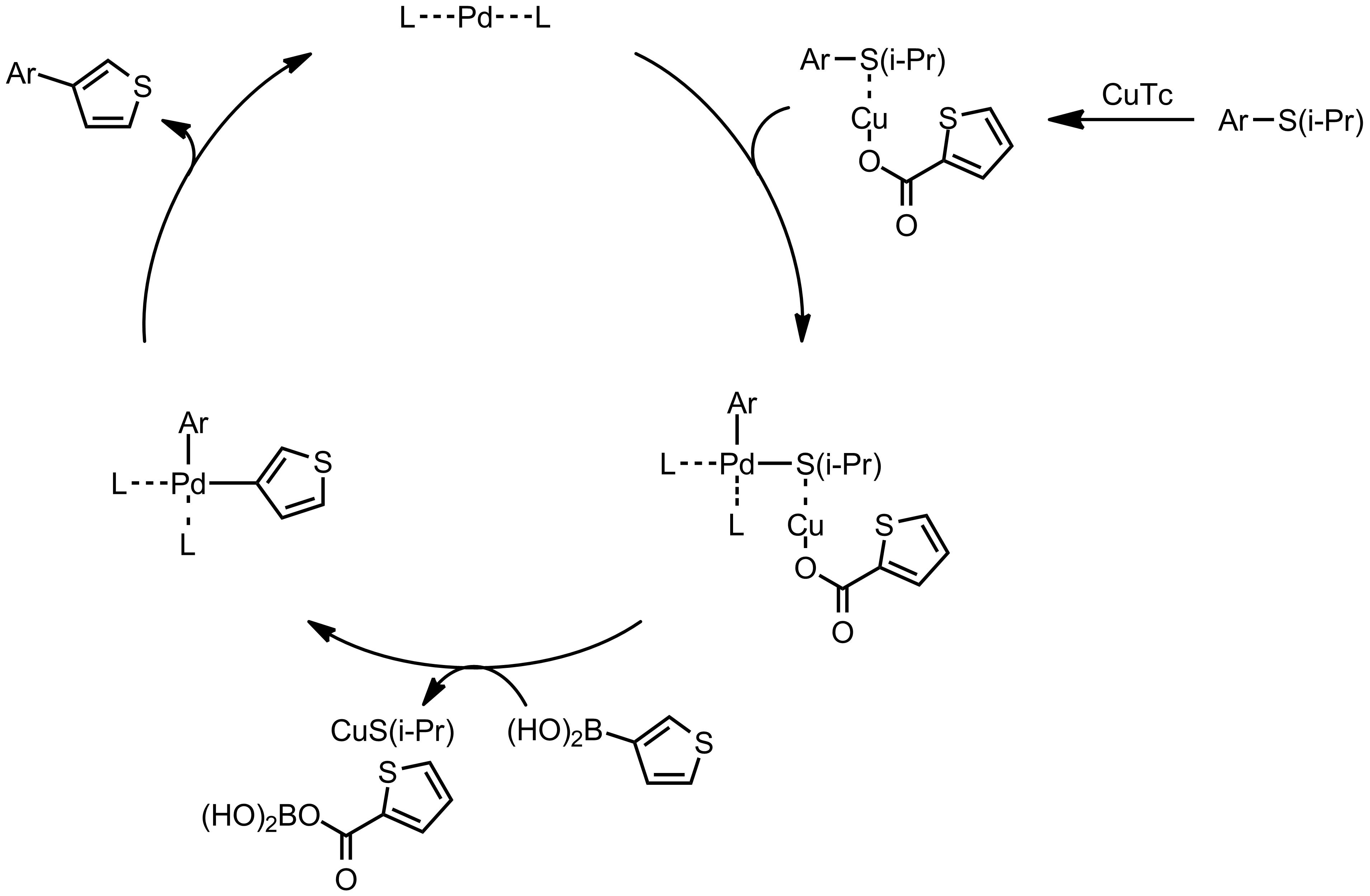 Mechanism of the Liebeskind-Srogl Coupling