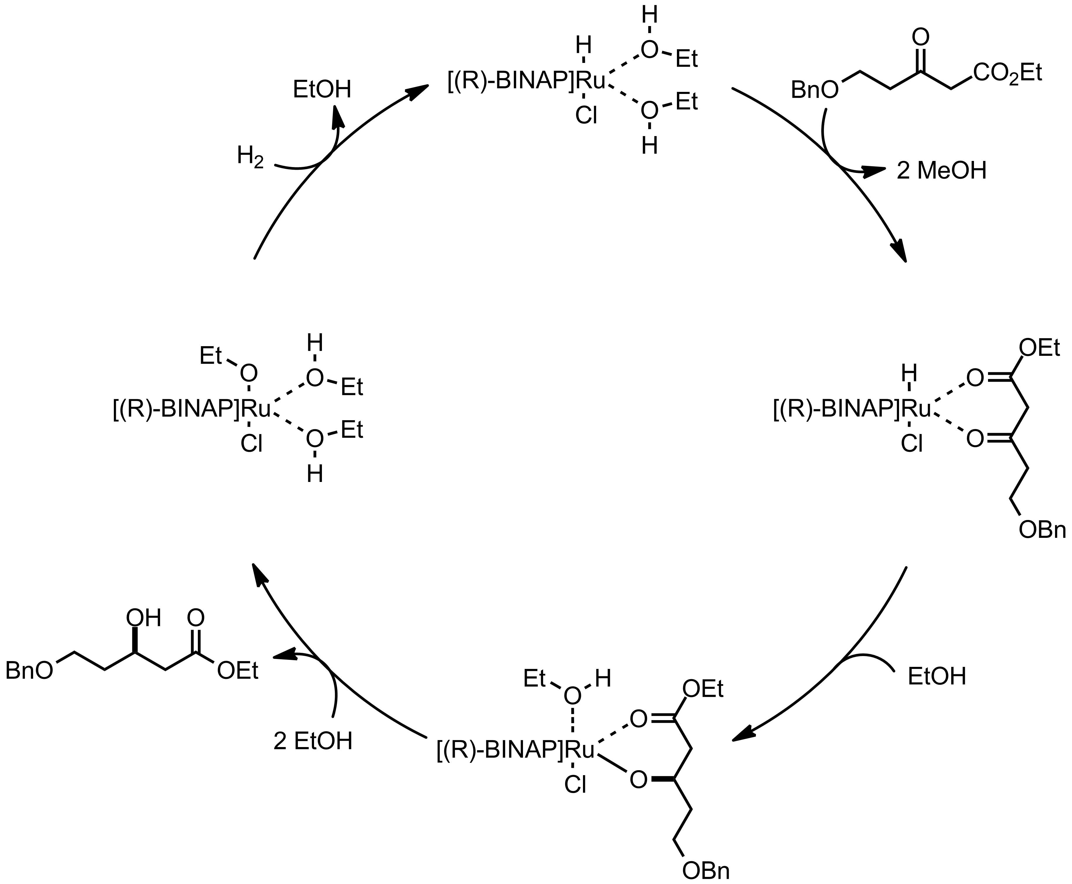 Mechanism of the Noyori Asymmetric Hydrogenation