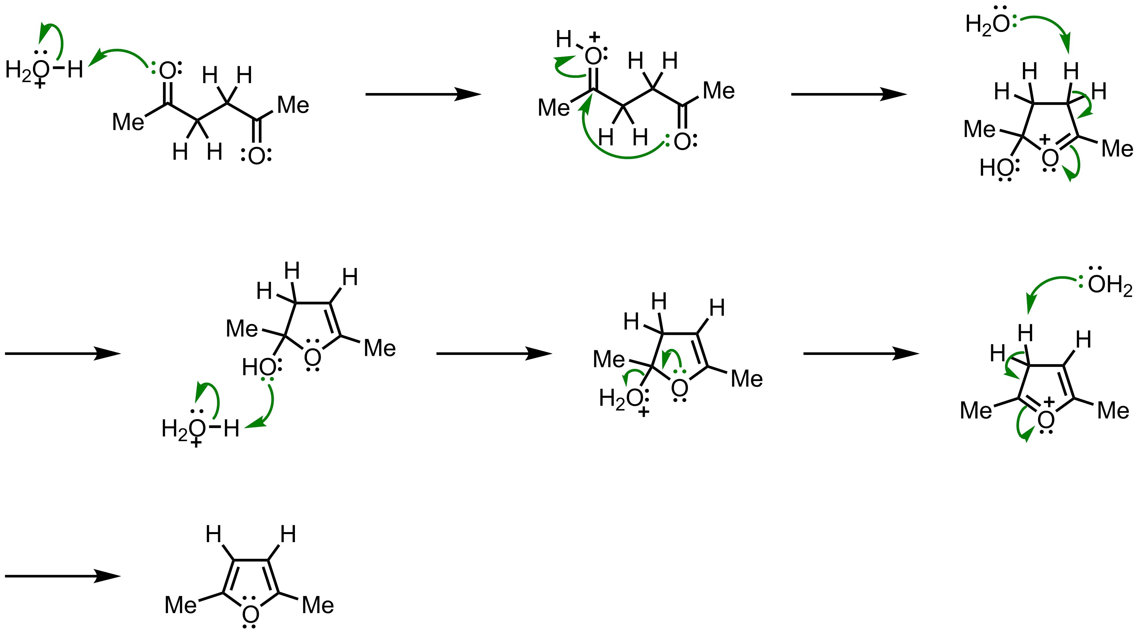 Mechanism of the Paal-Knorr Furan Synthesis