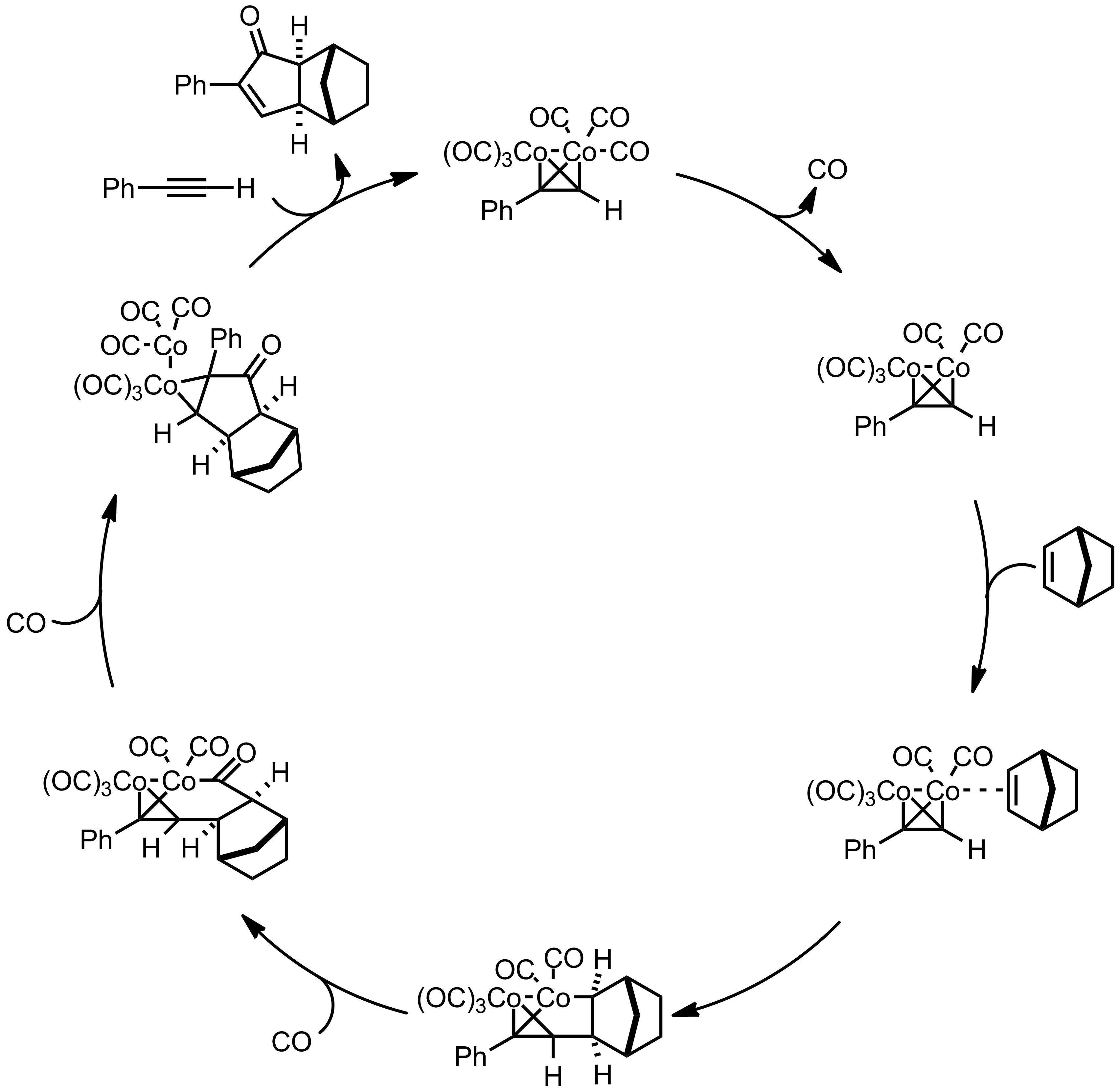 Mechanism of the Pauson-Khand Reaction