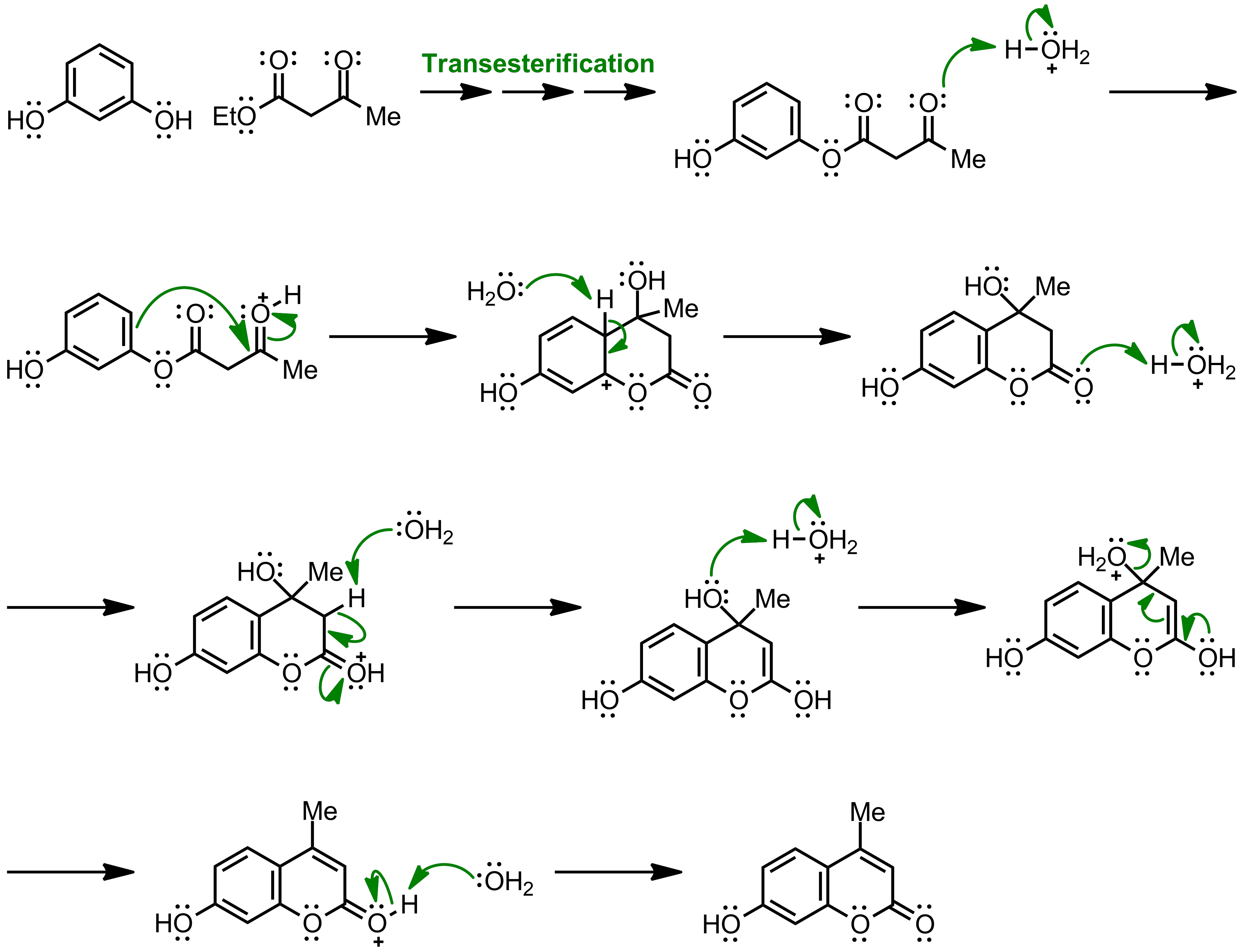 Mechanism of the Pechmann Condensation