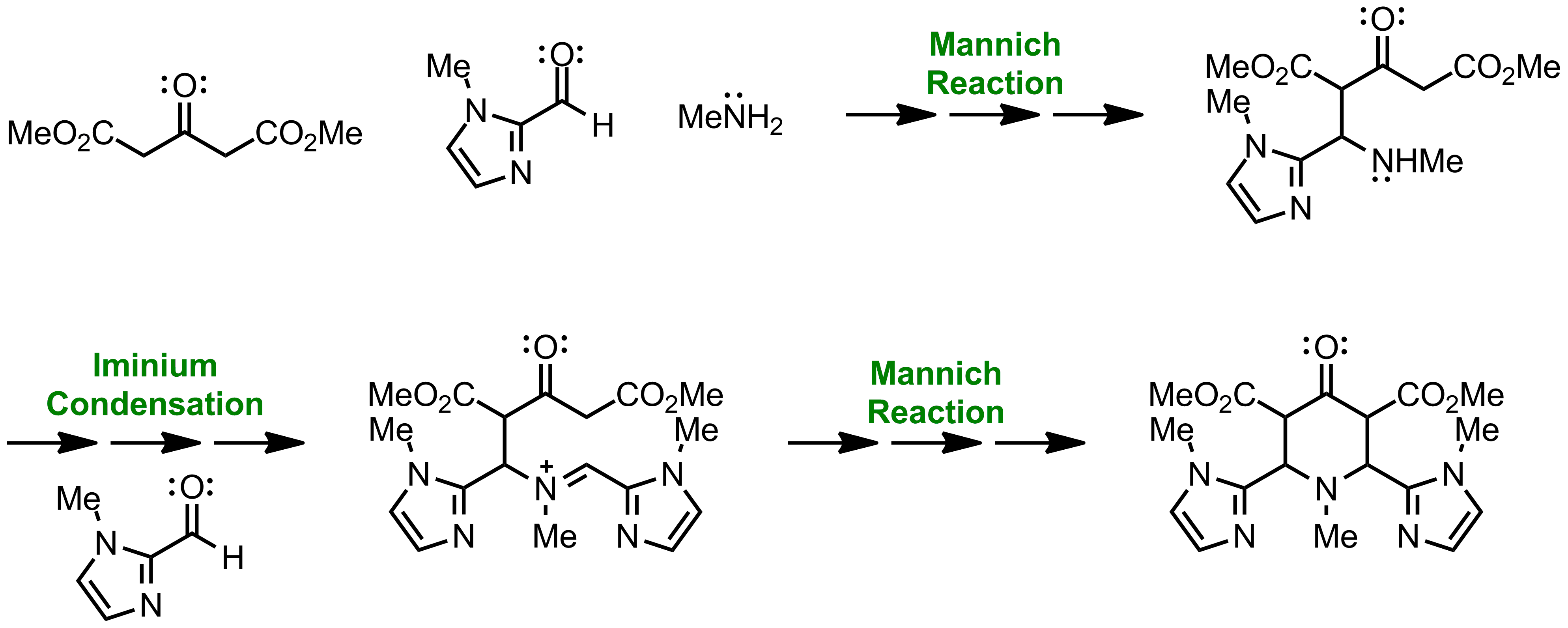 Mechanism of the Petrenko-Kritschenko Piperidone Synthesis