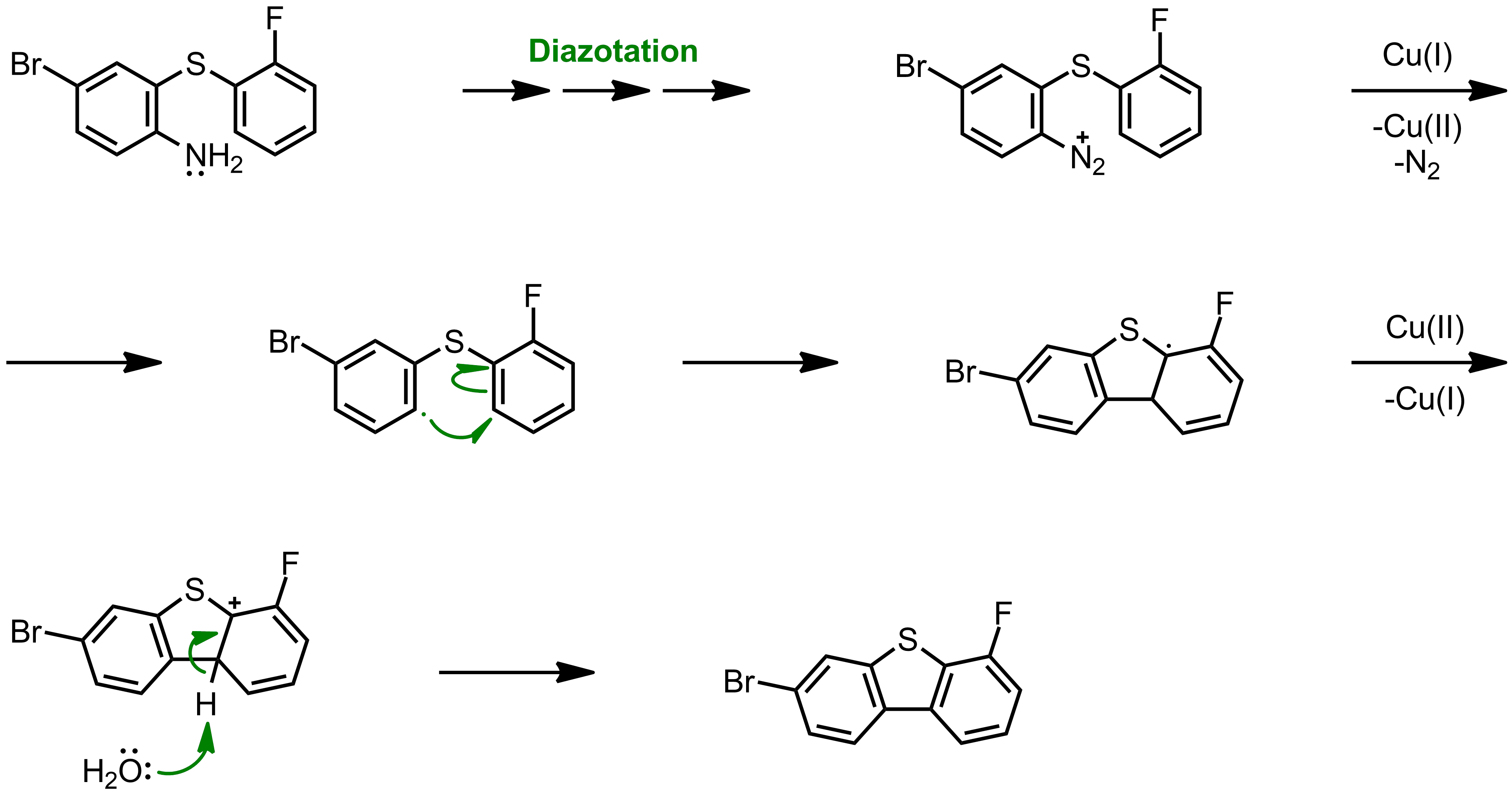 Mechanism of the Pschorr Reaction