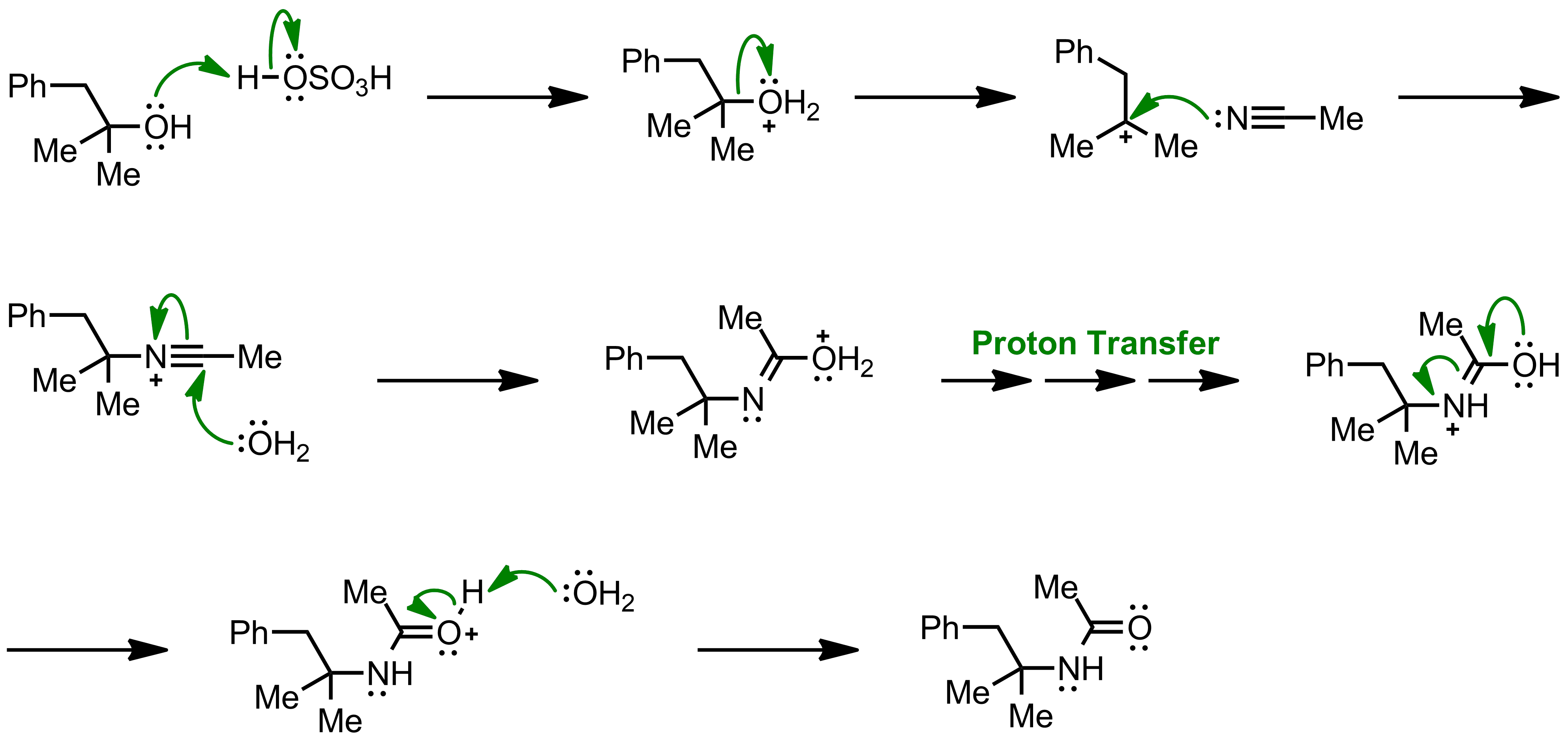 Mechanism of the Ritter Reaction