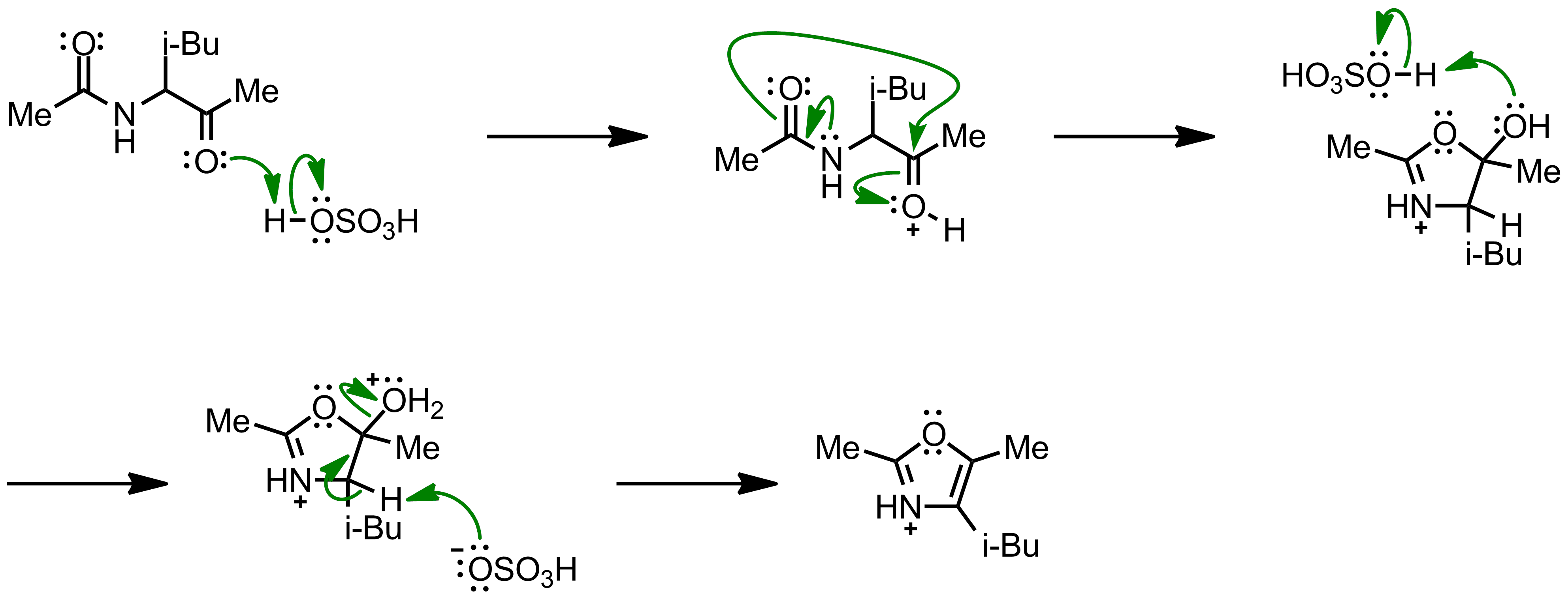 Mechanism of the Robinson-Gabriel Synthesis
