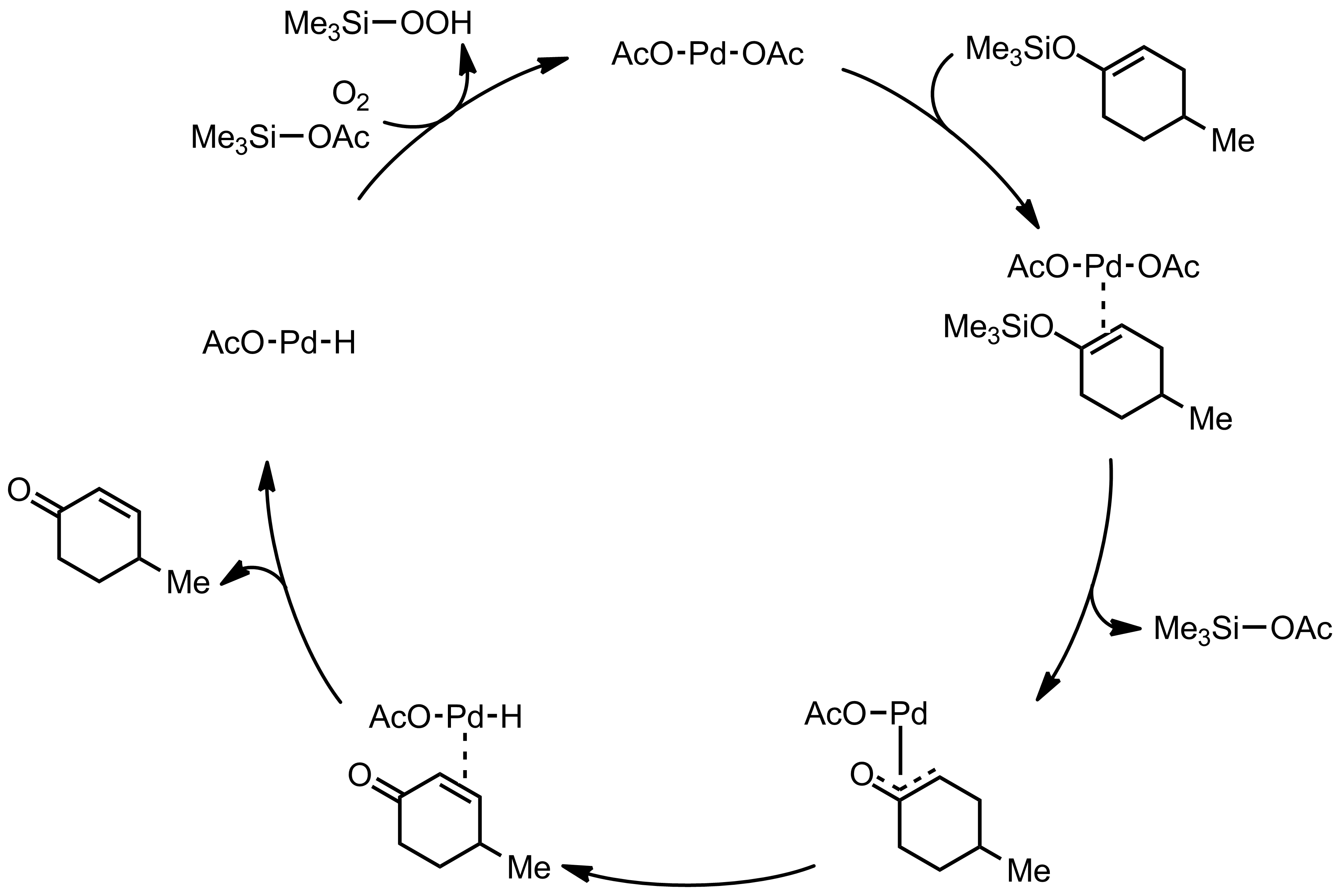 Mechanism of the Saegusa-Ito Oxidation