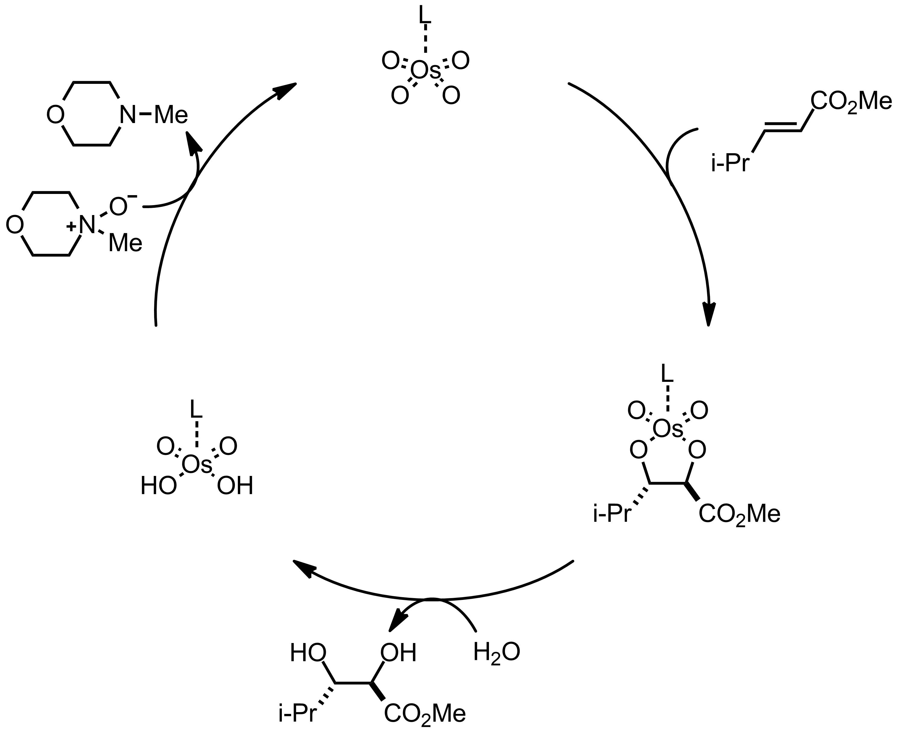 Mechanism of the Schmidt Reaction