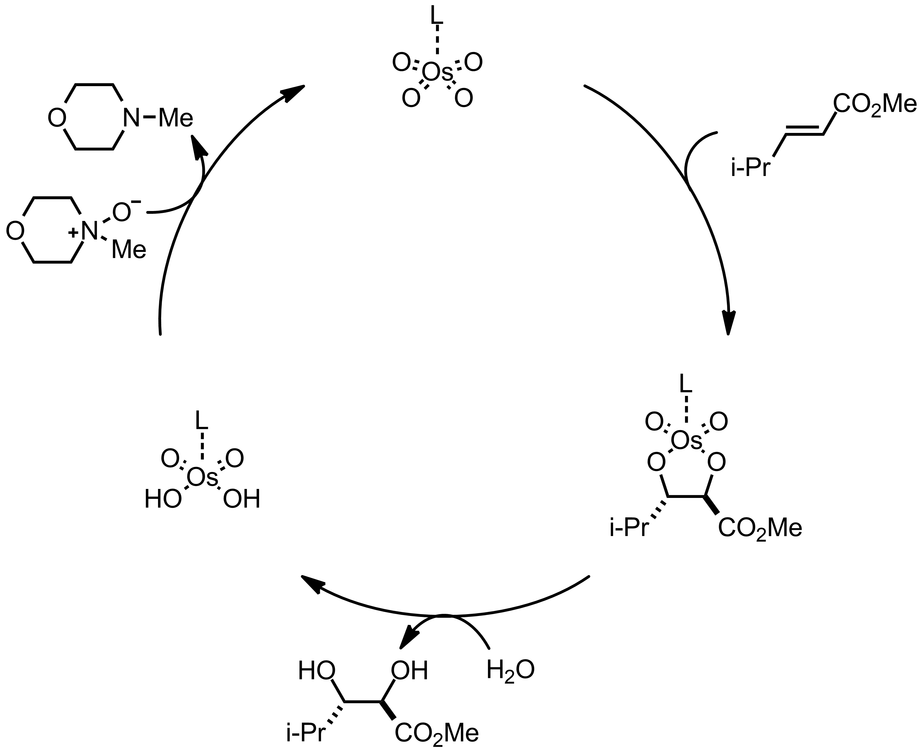 Mechanism of the Sharpless Asymmetric Dihydroxylation