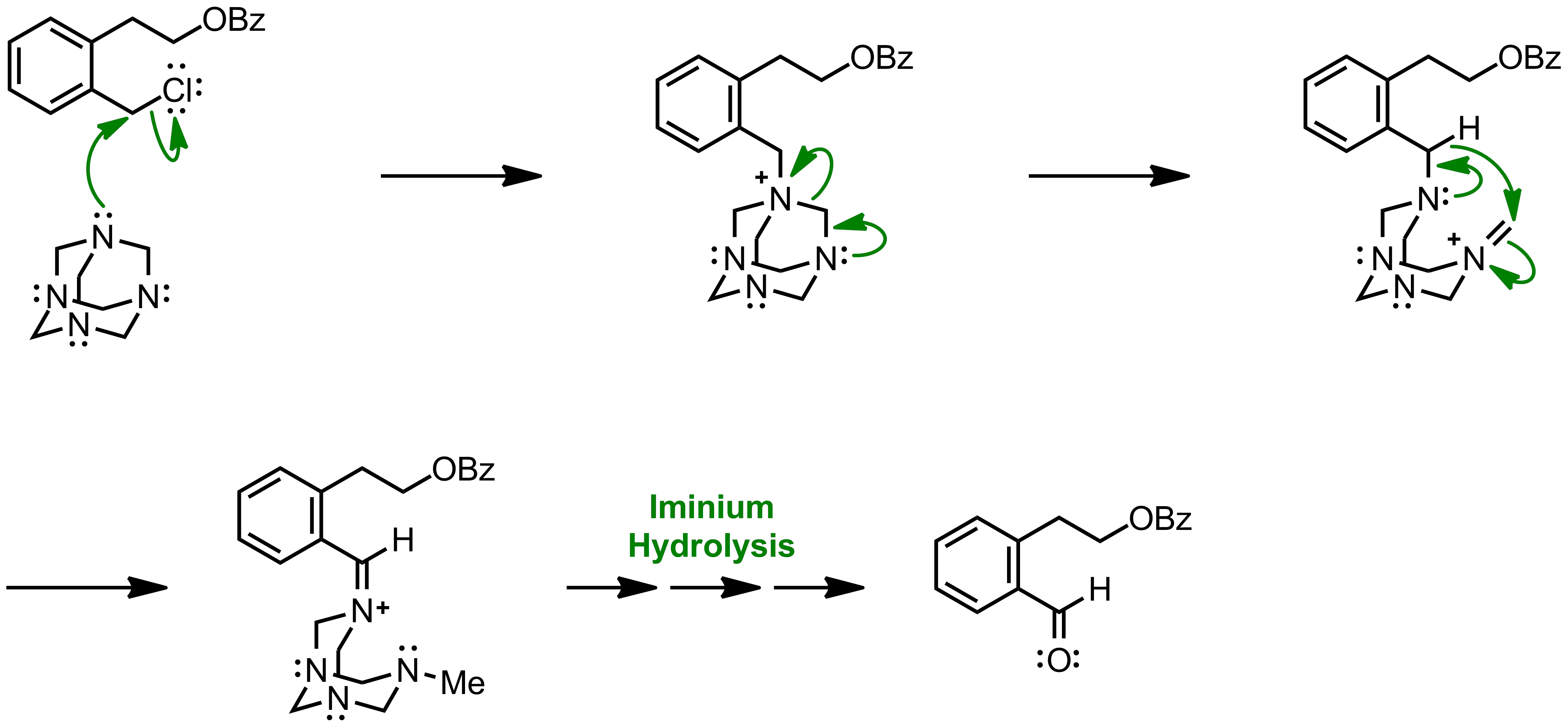 Mechanism of the Sommelet Reaction