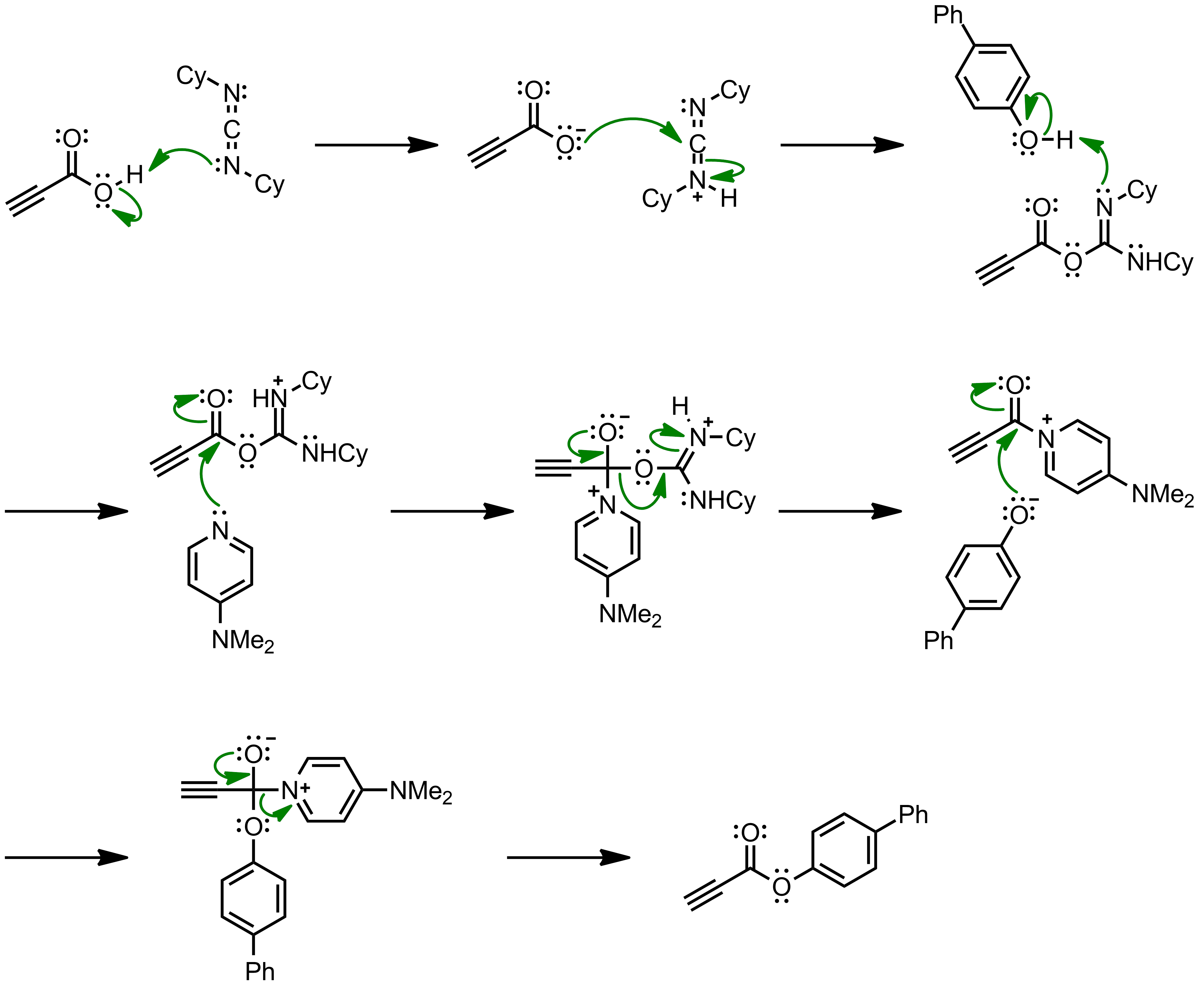 Mechanism of the Steglich Esterification