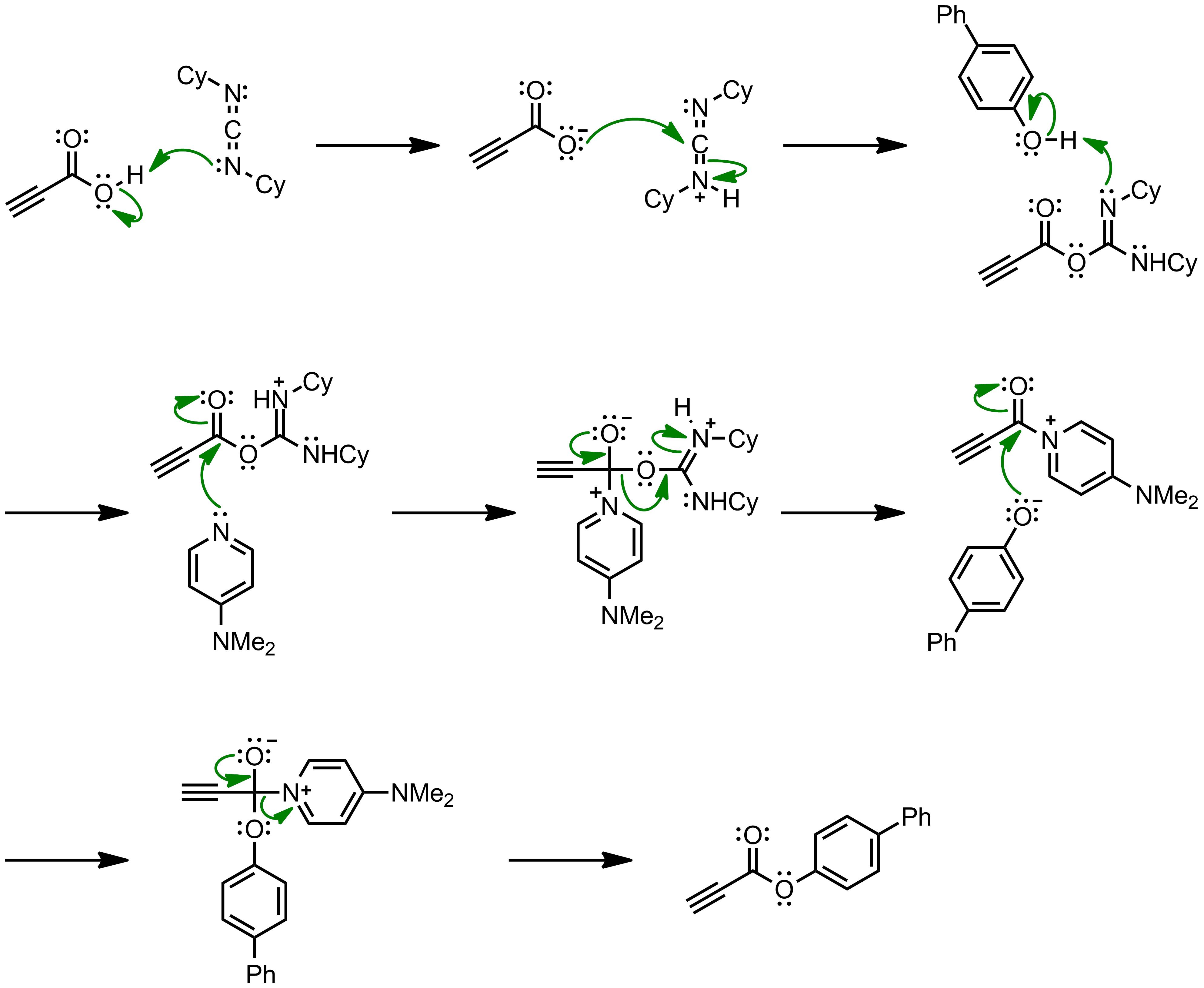 Mechanism of the Steglich Esterification