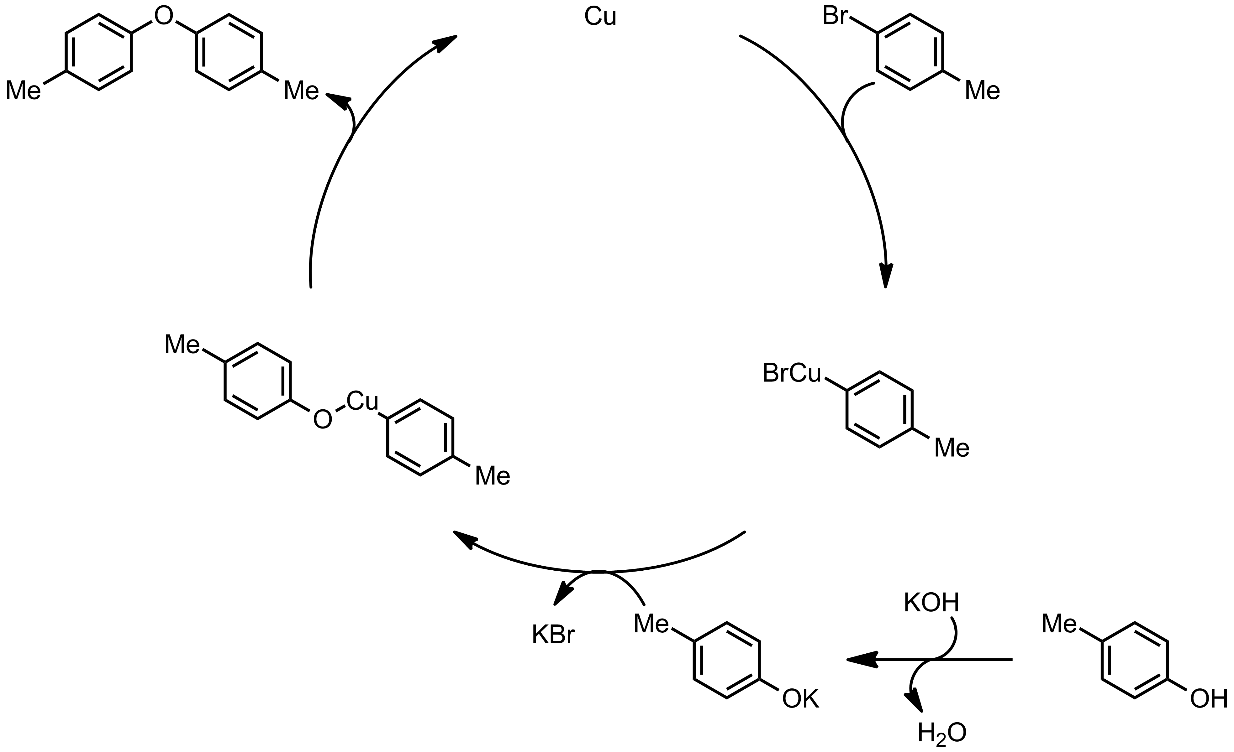 Mechanism of the Ullmann Condensation