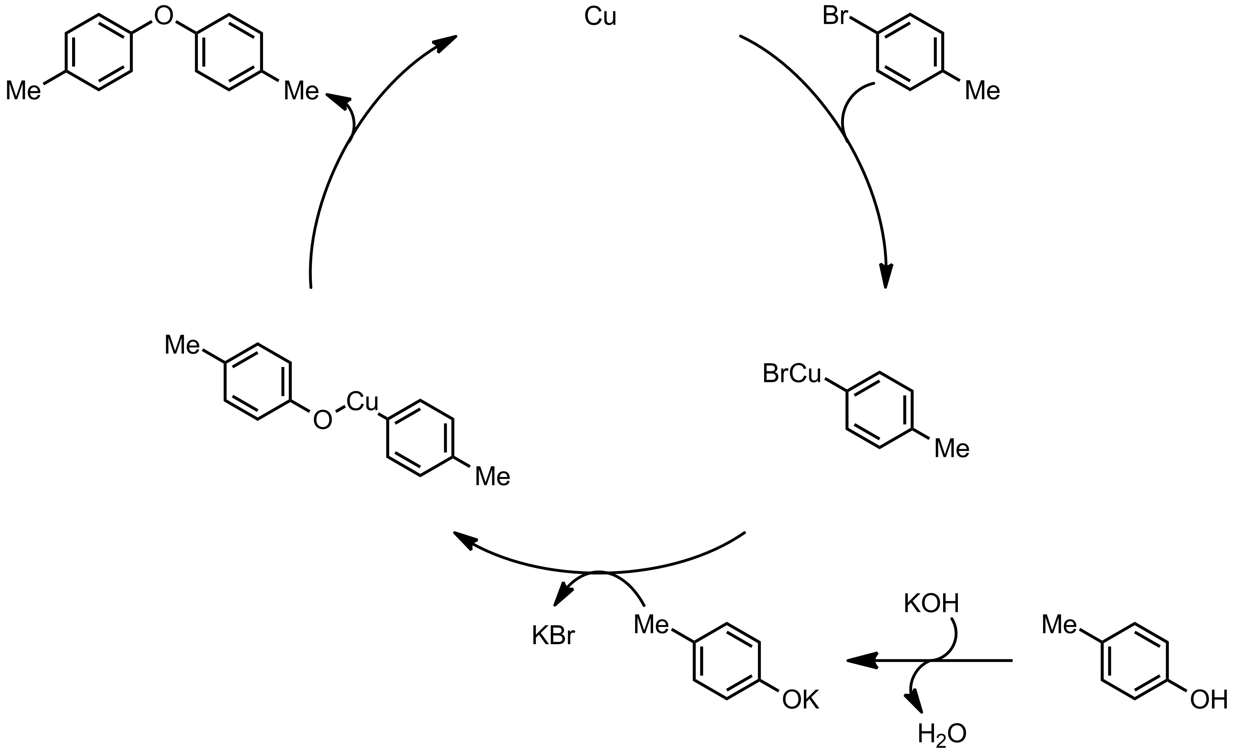 Mechanism of the Ullmann Condensation