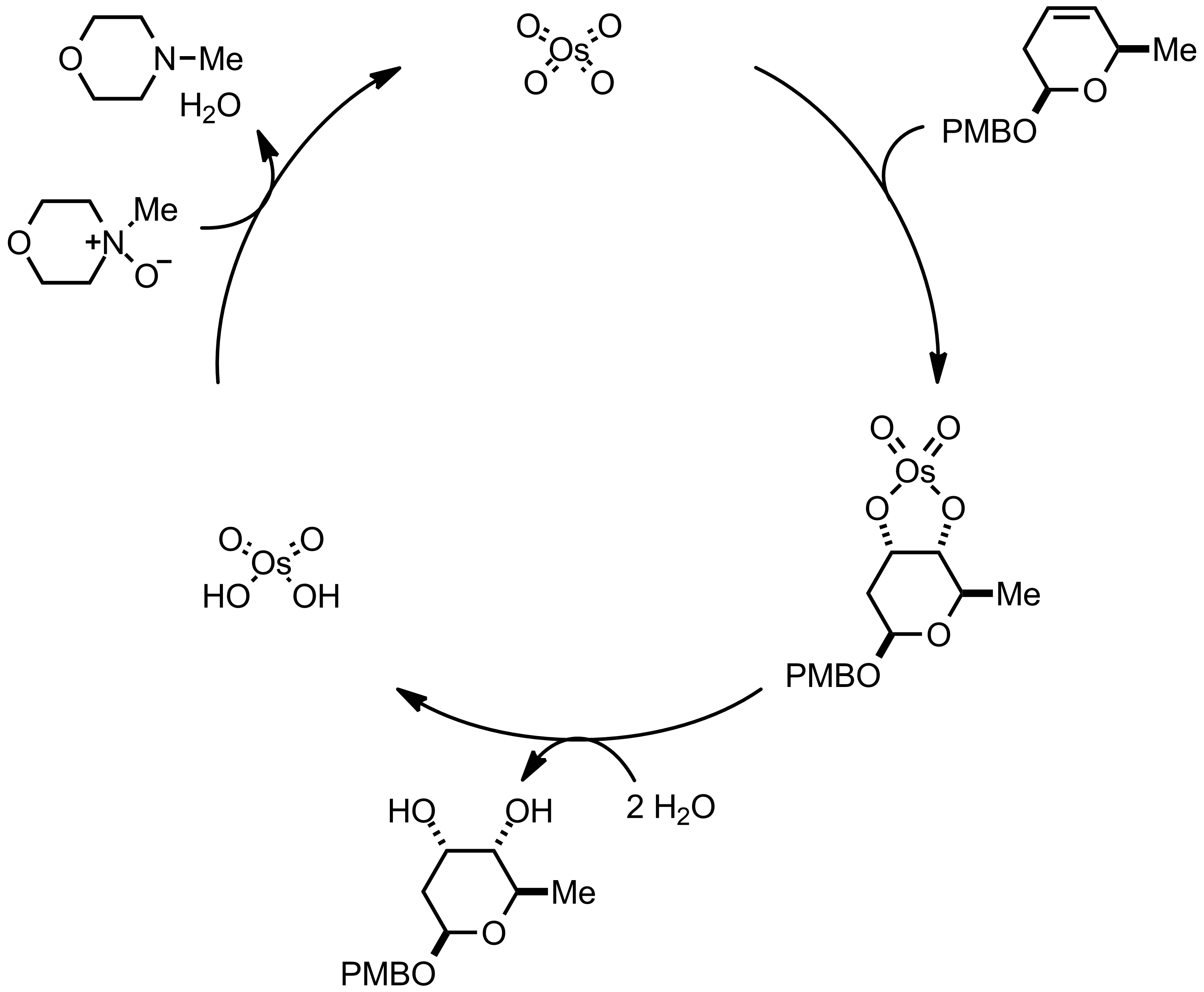 Mechanism of the Upjohn Dihydroxylation