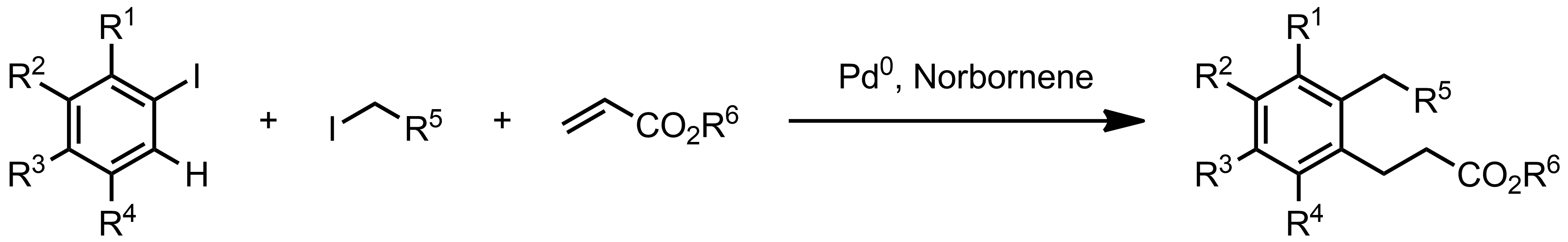 Schematic representation of the Catellani Reaction.