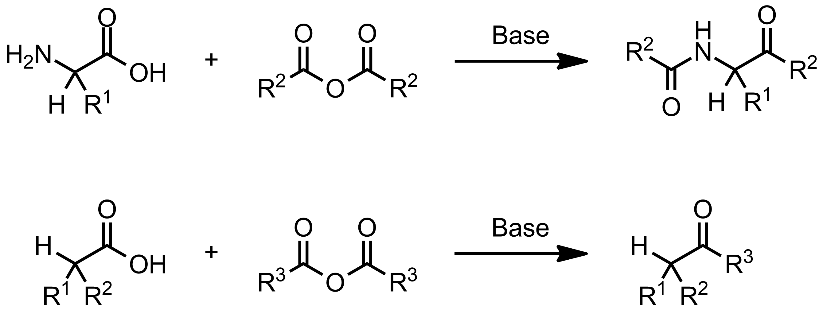 Schematic representation of the Dakin-West Reaction.