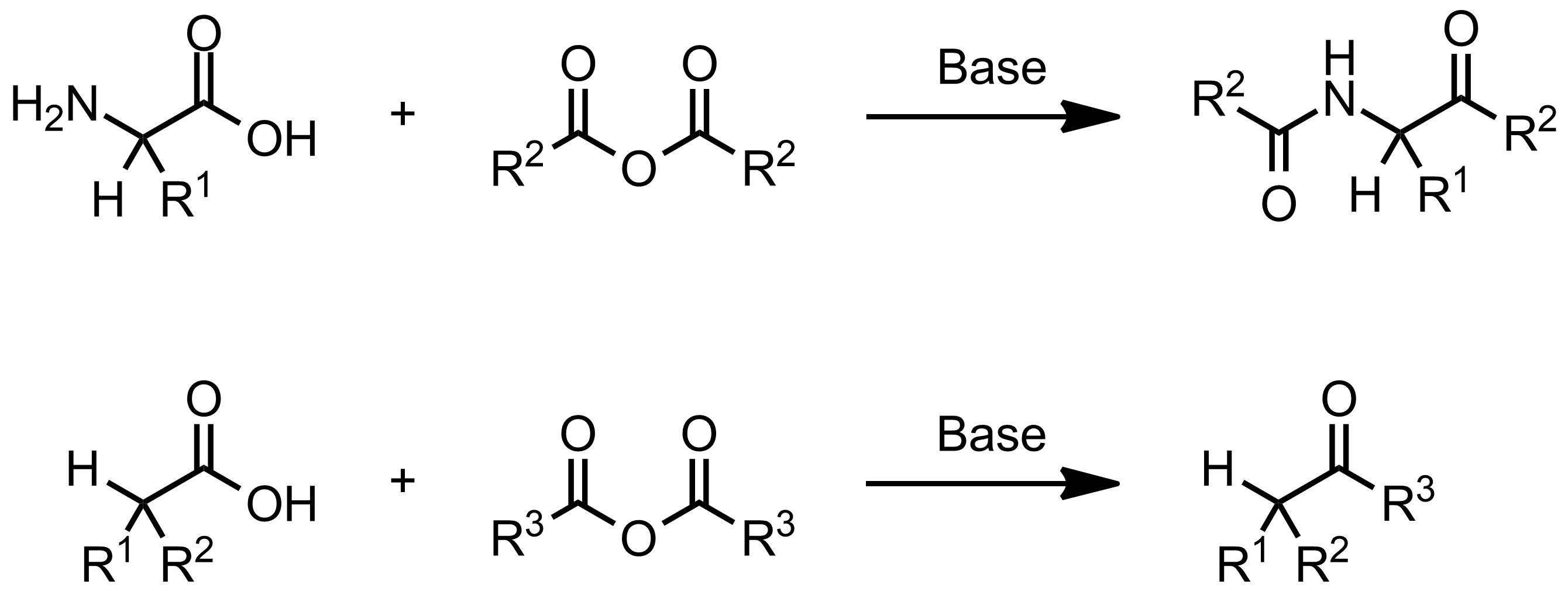 Schematic representation of the Dakin-West Reaction.
