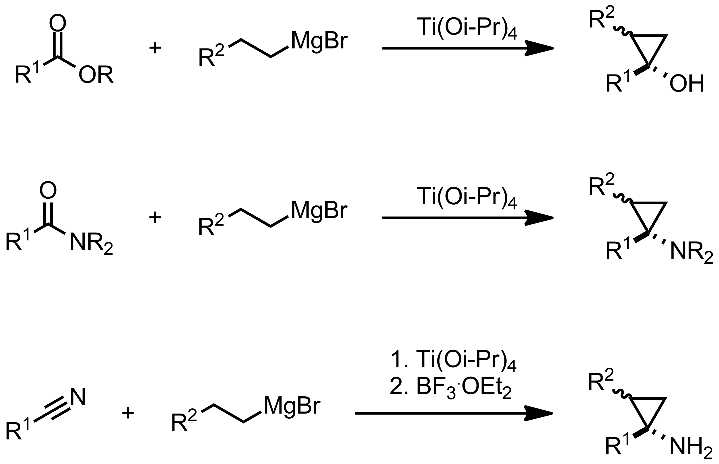 Schematic representation of the Kulinkovich Reaction.