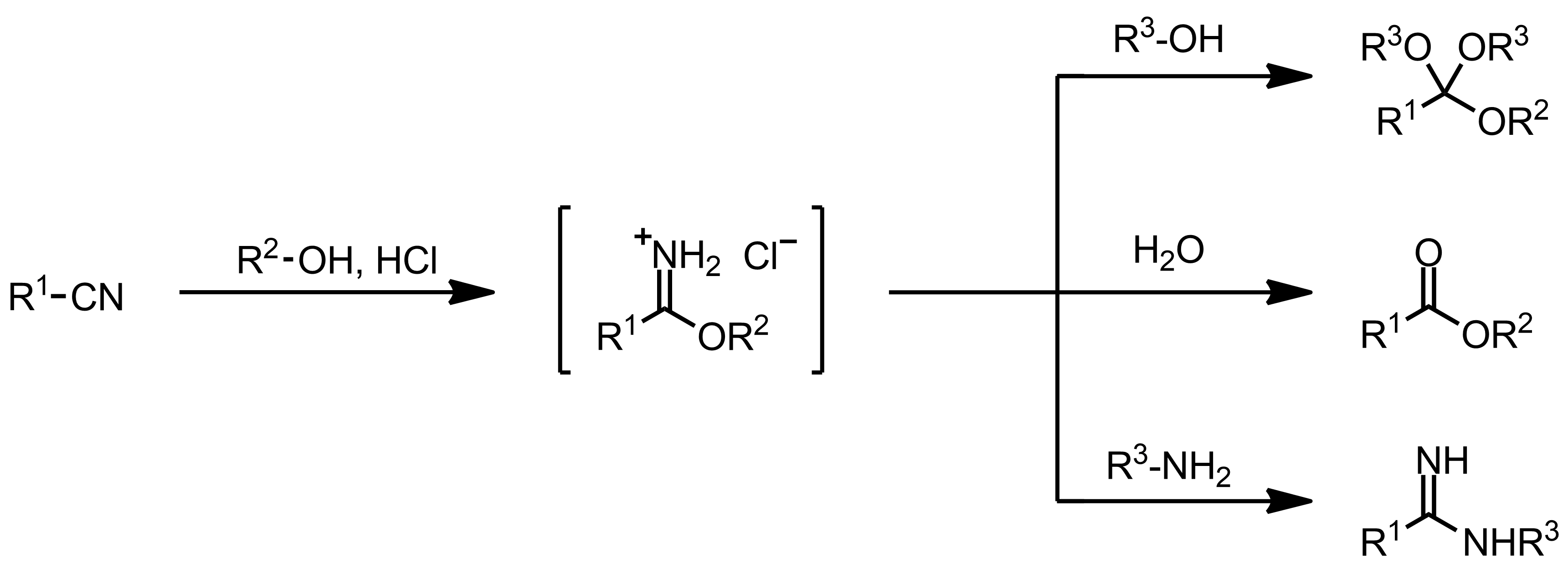Schematic representation of the Pinner Reaction.