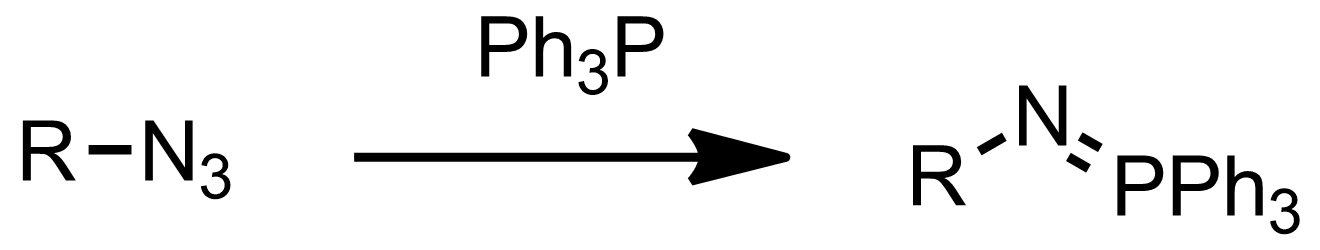 Schematic representation of the Staudinger Reaction.