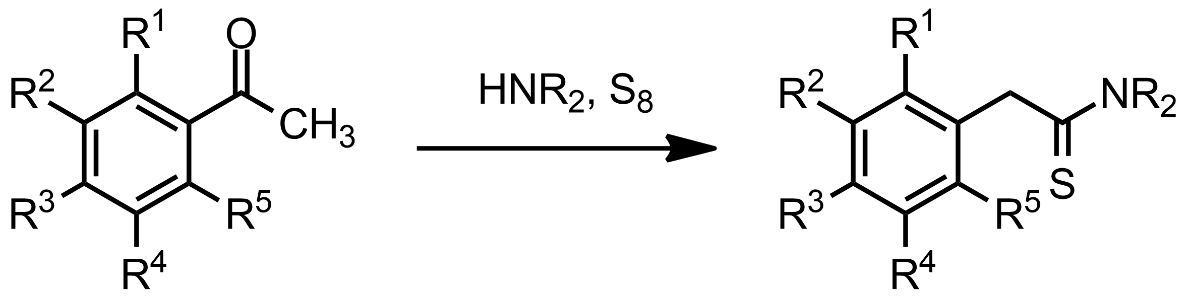 Schematic representation of the Willgerodt-Kindler Reaction.